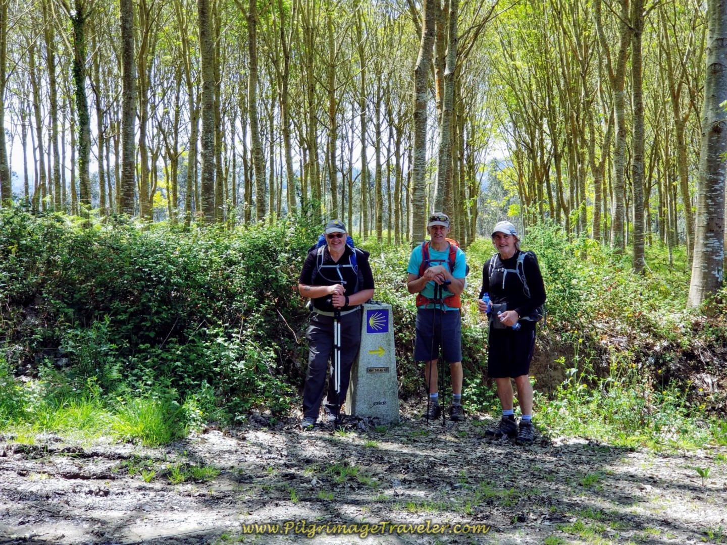 Pausing for a Water and Photo Break in the Forest on day five of the Camino Inglés