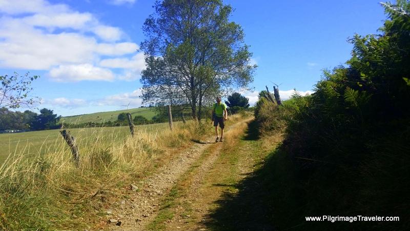 Open Country Afternoon Walk on the Camino Primitivo near Tineo, Asturias, Spain