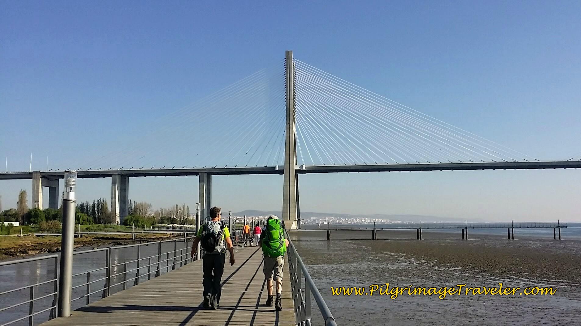 Vasco de Gama Bridge