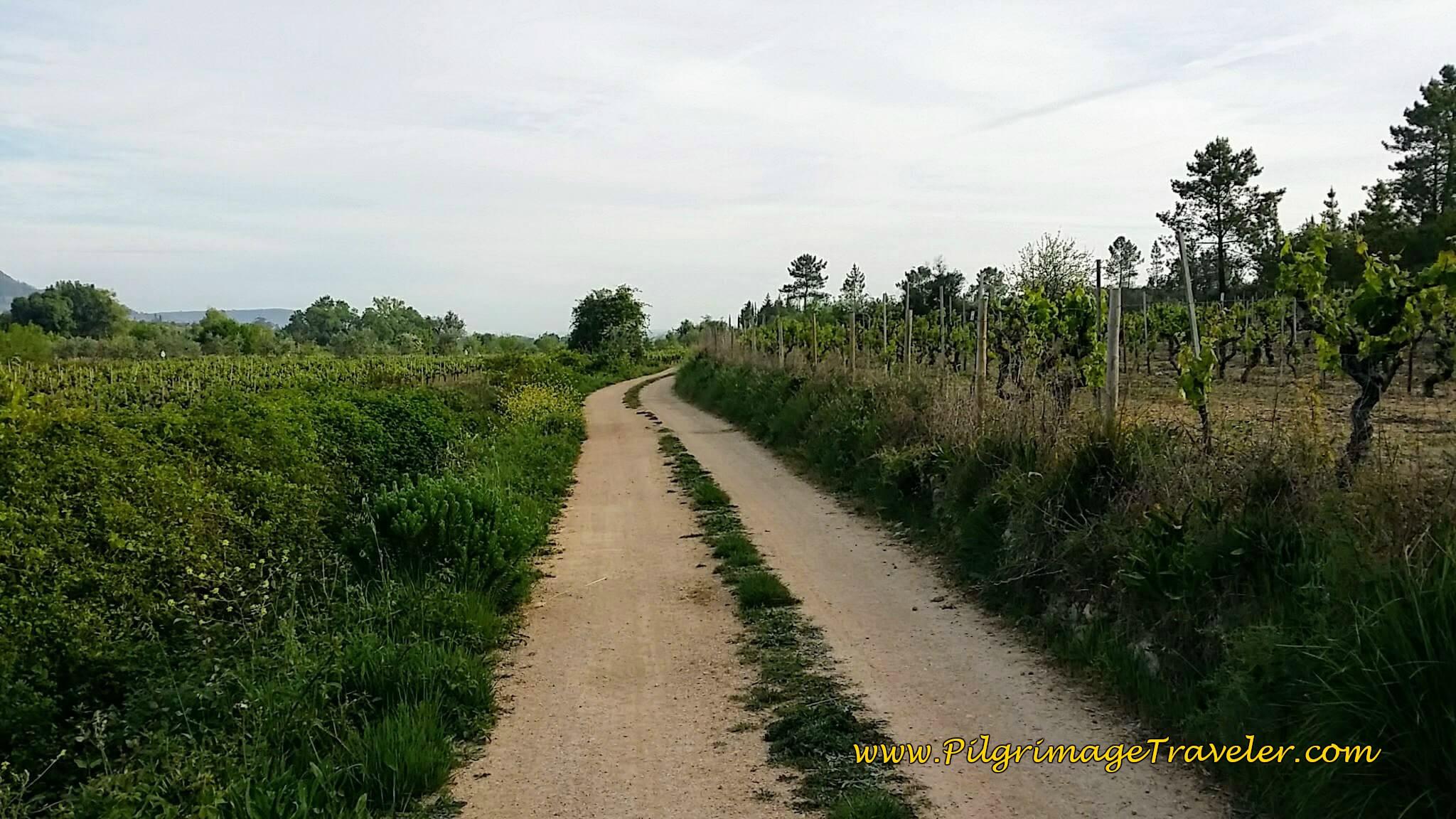 More Quiet Lanes Toward Fartosa