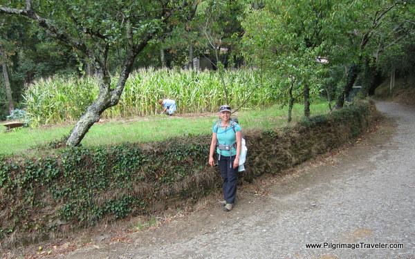 Elle and Rural Gardens near O Amenal, Spain
