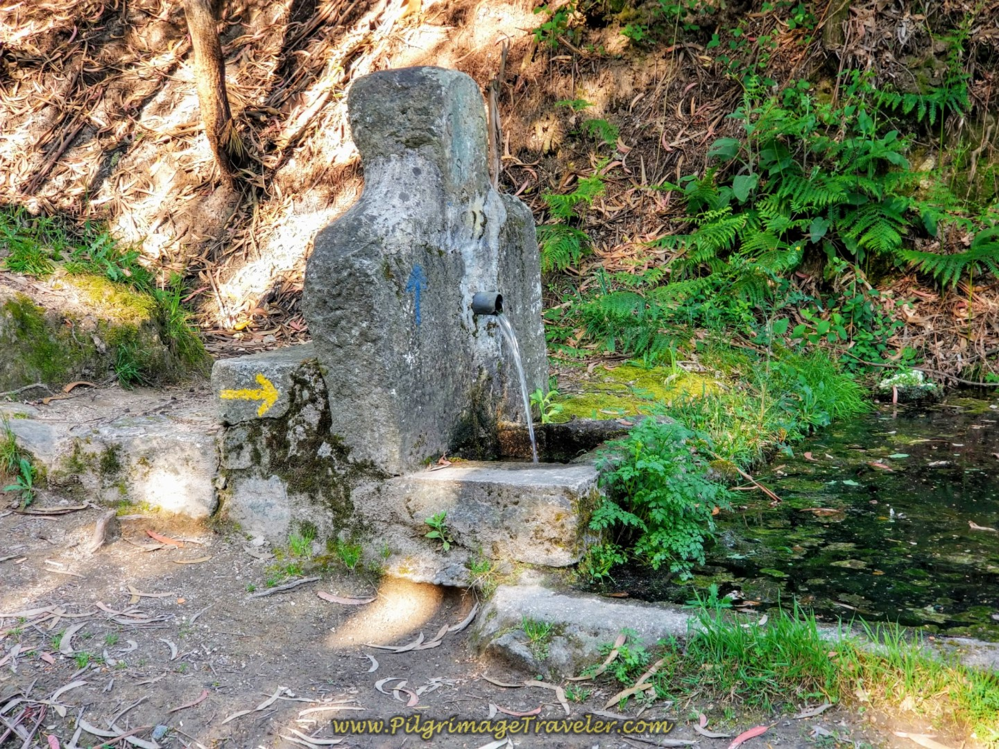 Fonte de Ferreirinha on day seventeen on the Central Route of the Camino Portugués