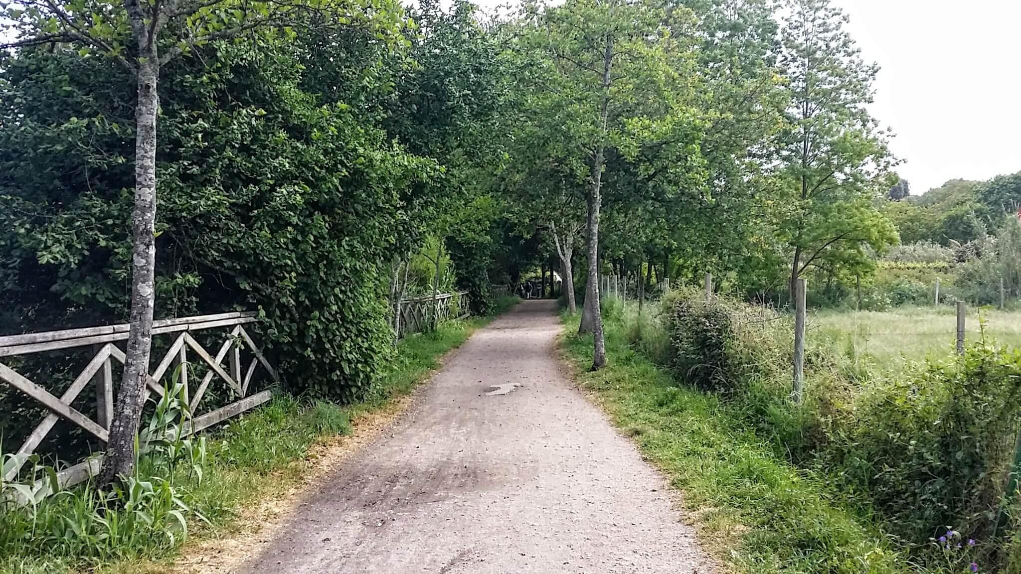 Senda do Lagares Trail System by the Lagares River, Vigo, Spain on day twenty-one of Portuguese Way