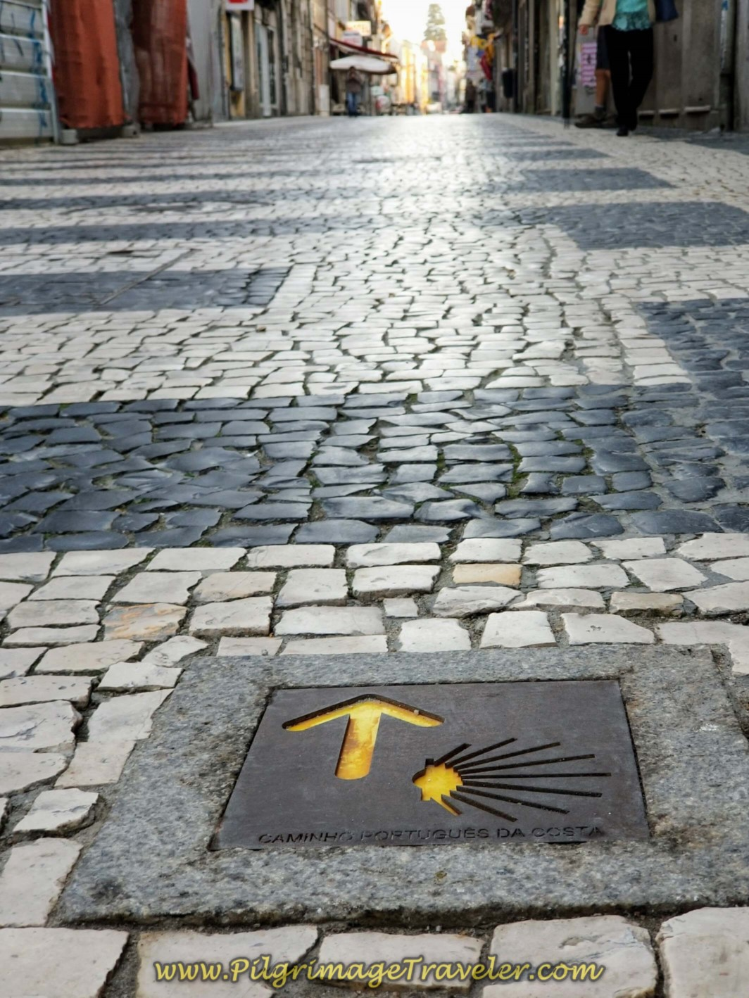 Waymarked Pavement in Porto on day fifteen on the Central Route of the Camino Portugués