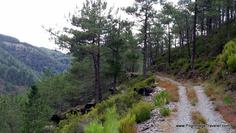 A High Walk Along the Reservoir, day six, Camino Primitivo