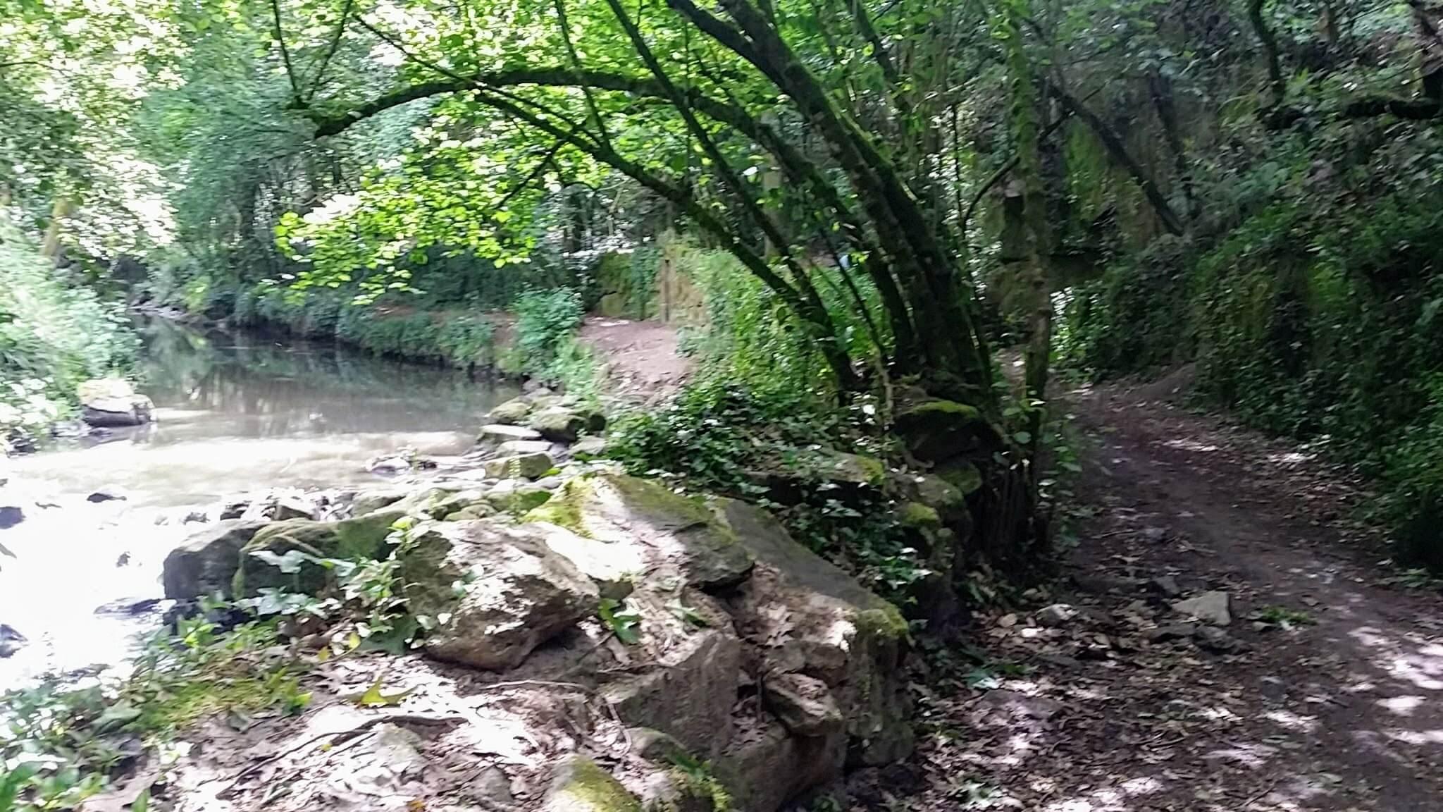 The Senda do Lagares Narrows, Vigo, Spain on day twenty-one of Portuguese Way