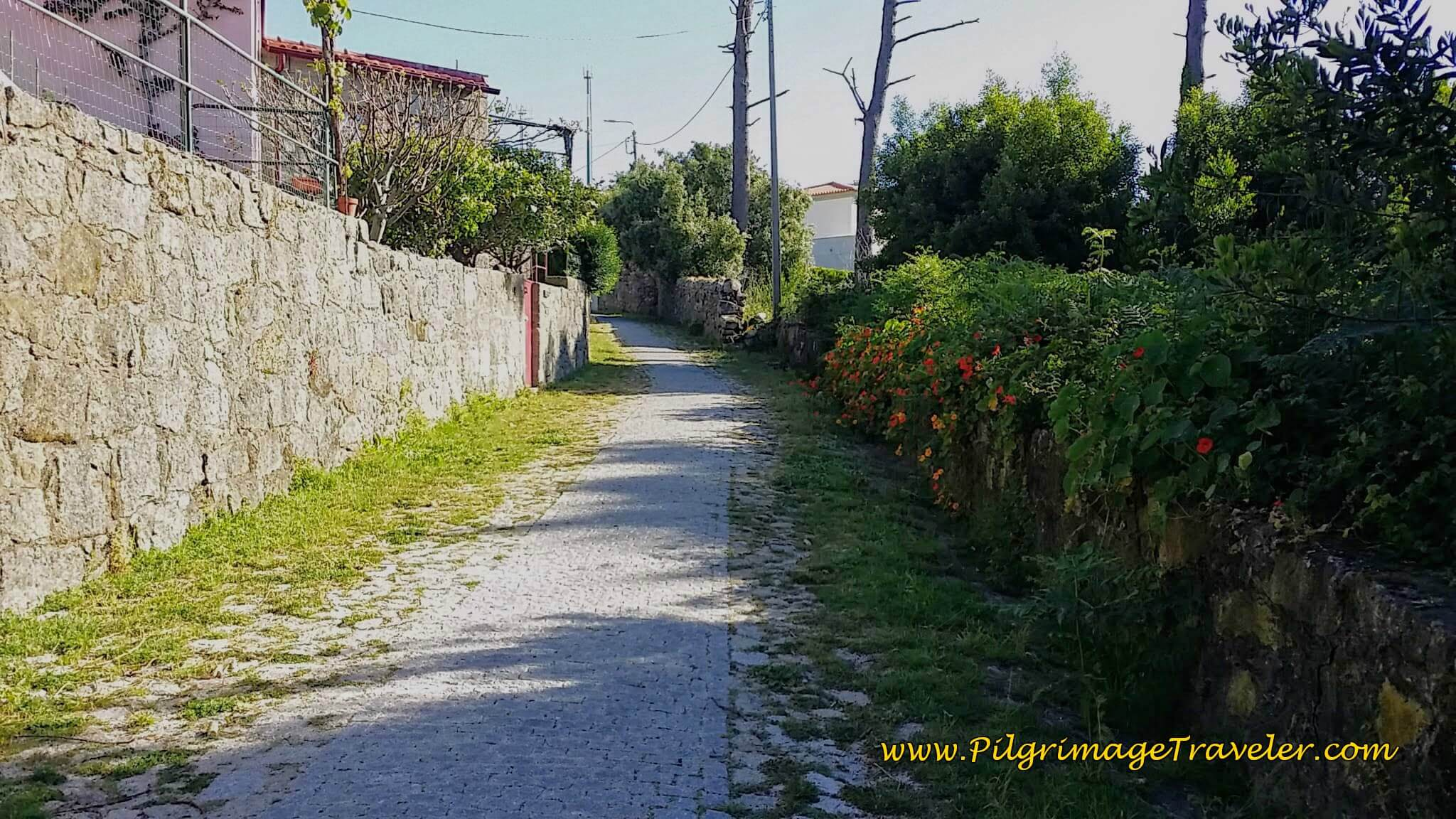 The Path to Montedor on day eighteen of the Portuguese Way on the Senda Litoral