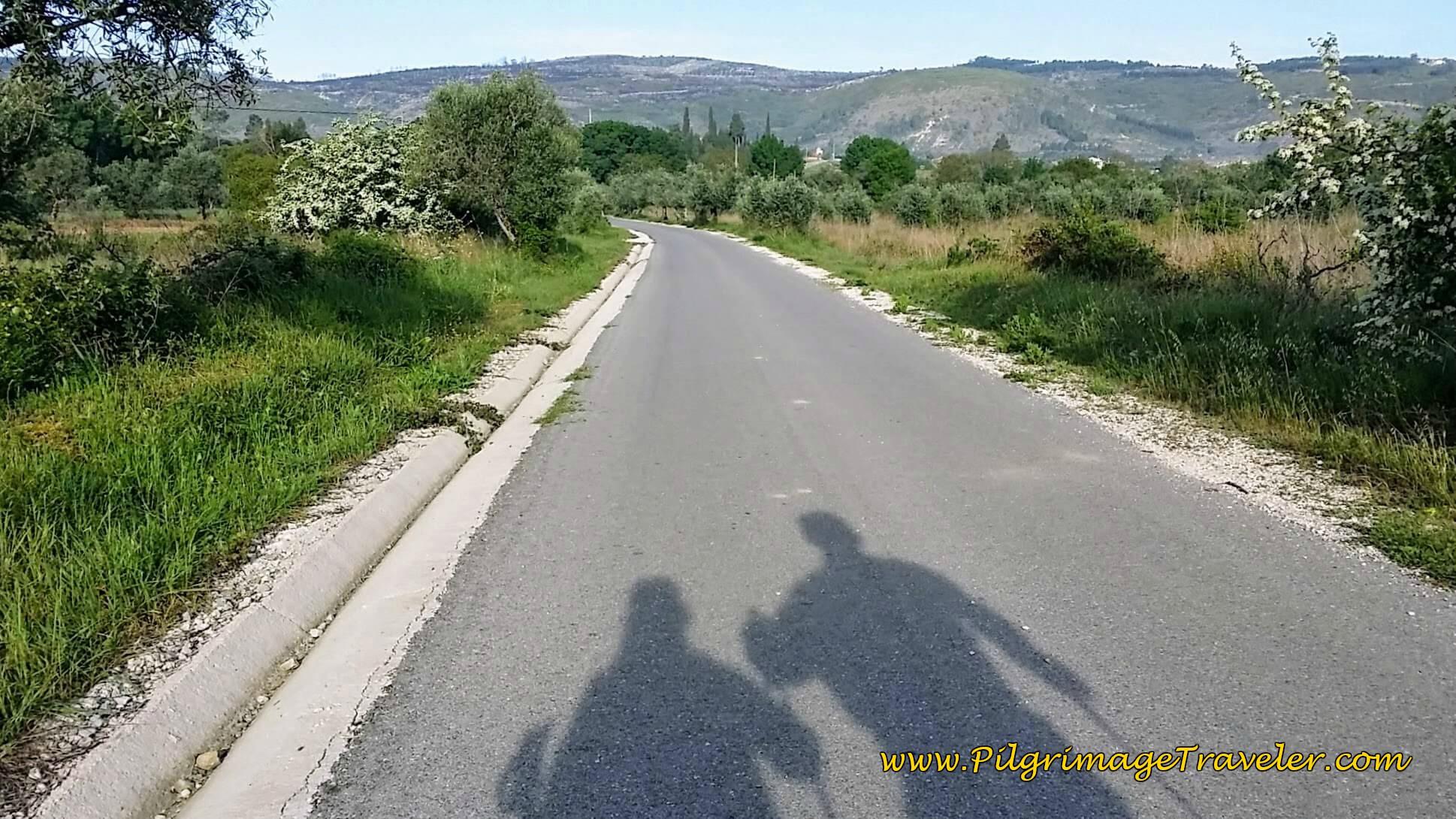 Left Turn on Pavement Toward Rabaçal
