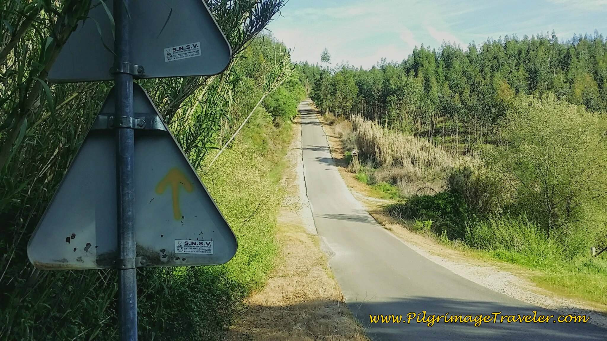 Estrada Giesteira to Calvinos