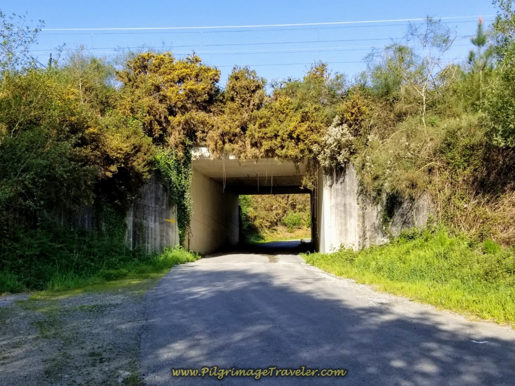 Walk Under Railroad Tracks on day eight of the Camino Inglés