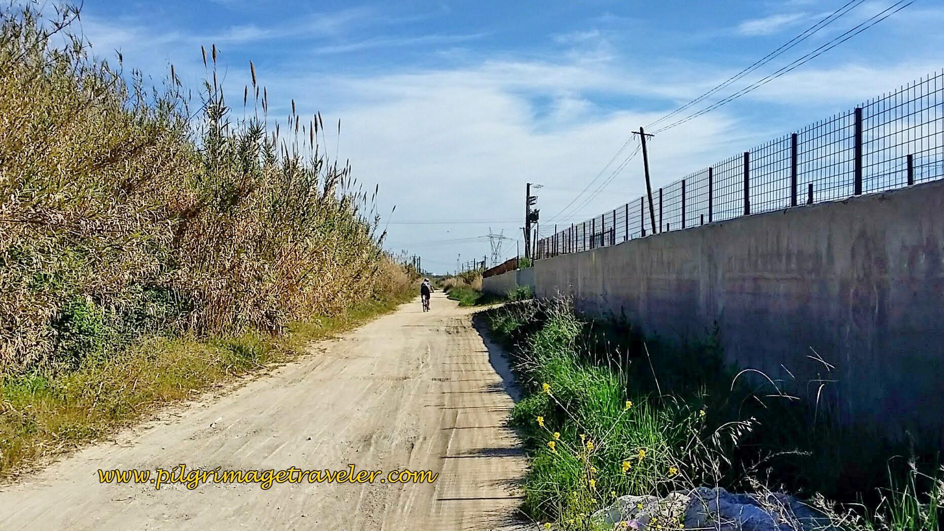 Lane Joins the Railroad Tracks, walking towards Castanheira do Ribatejo