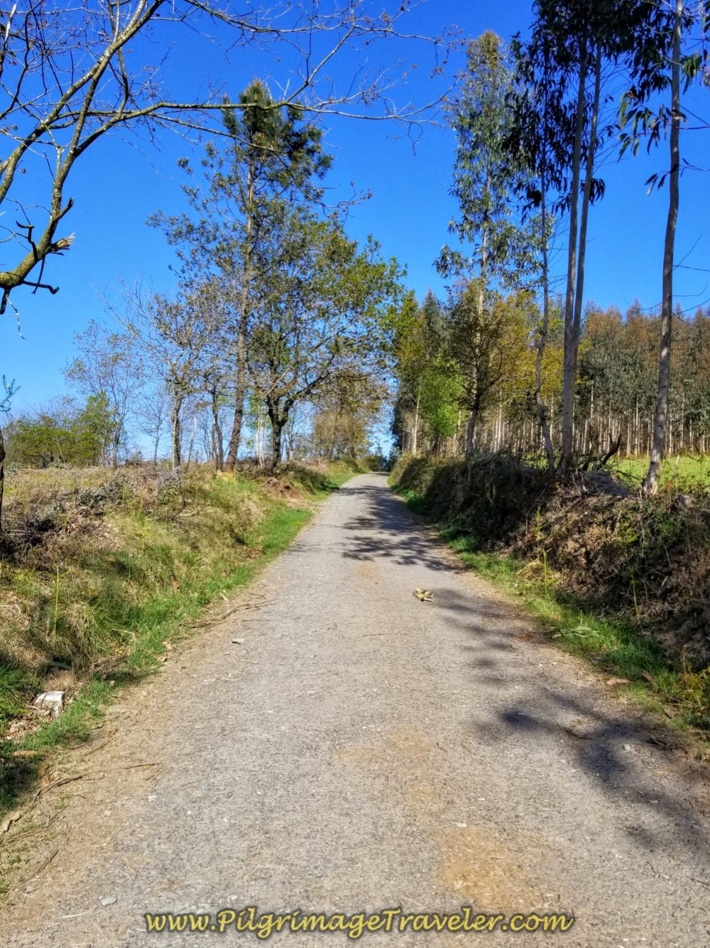 The Climb Steepens on day six of the Camino Inglés