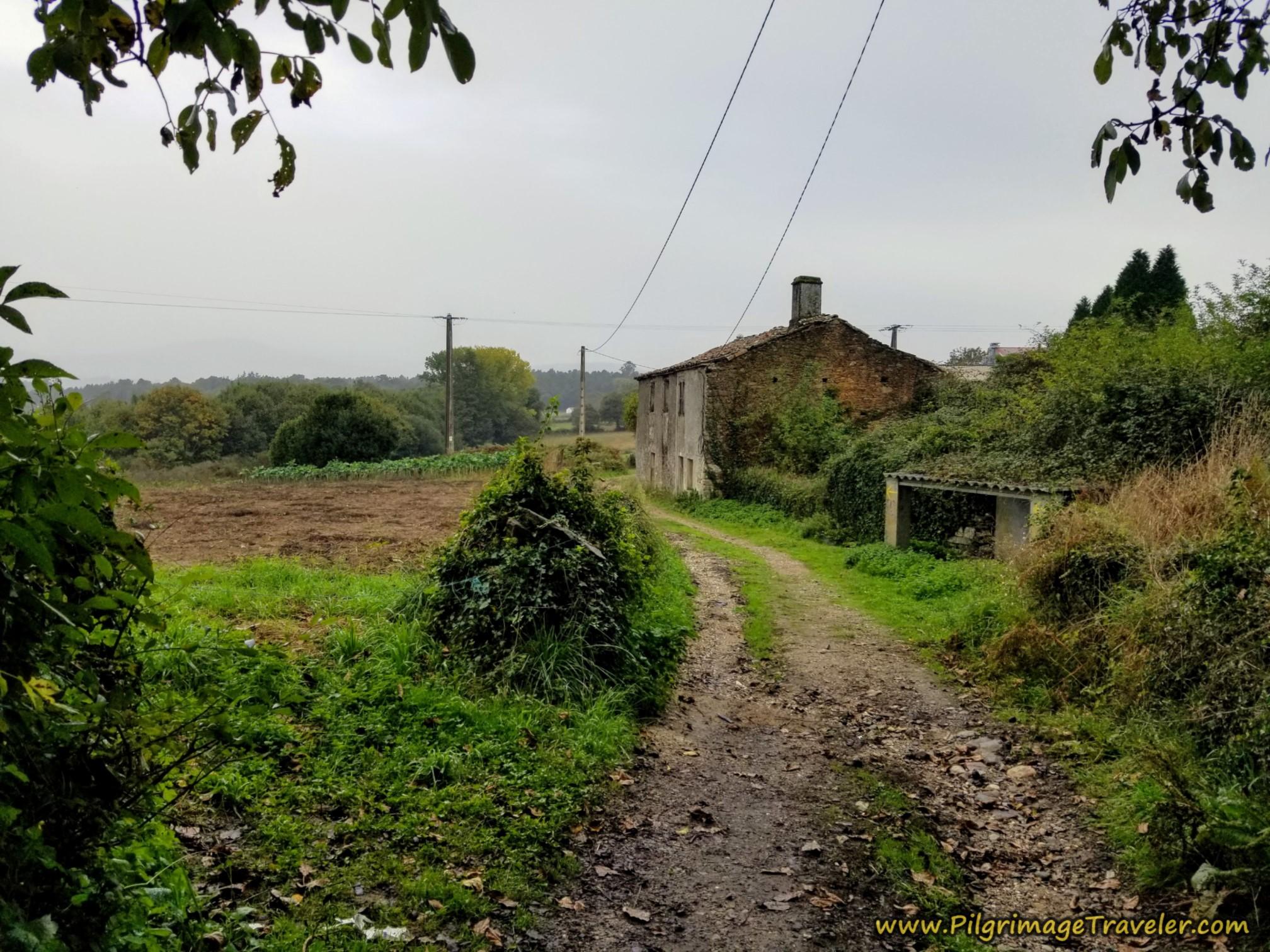 The Next Lane Onward from Prado