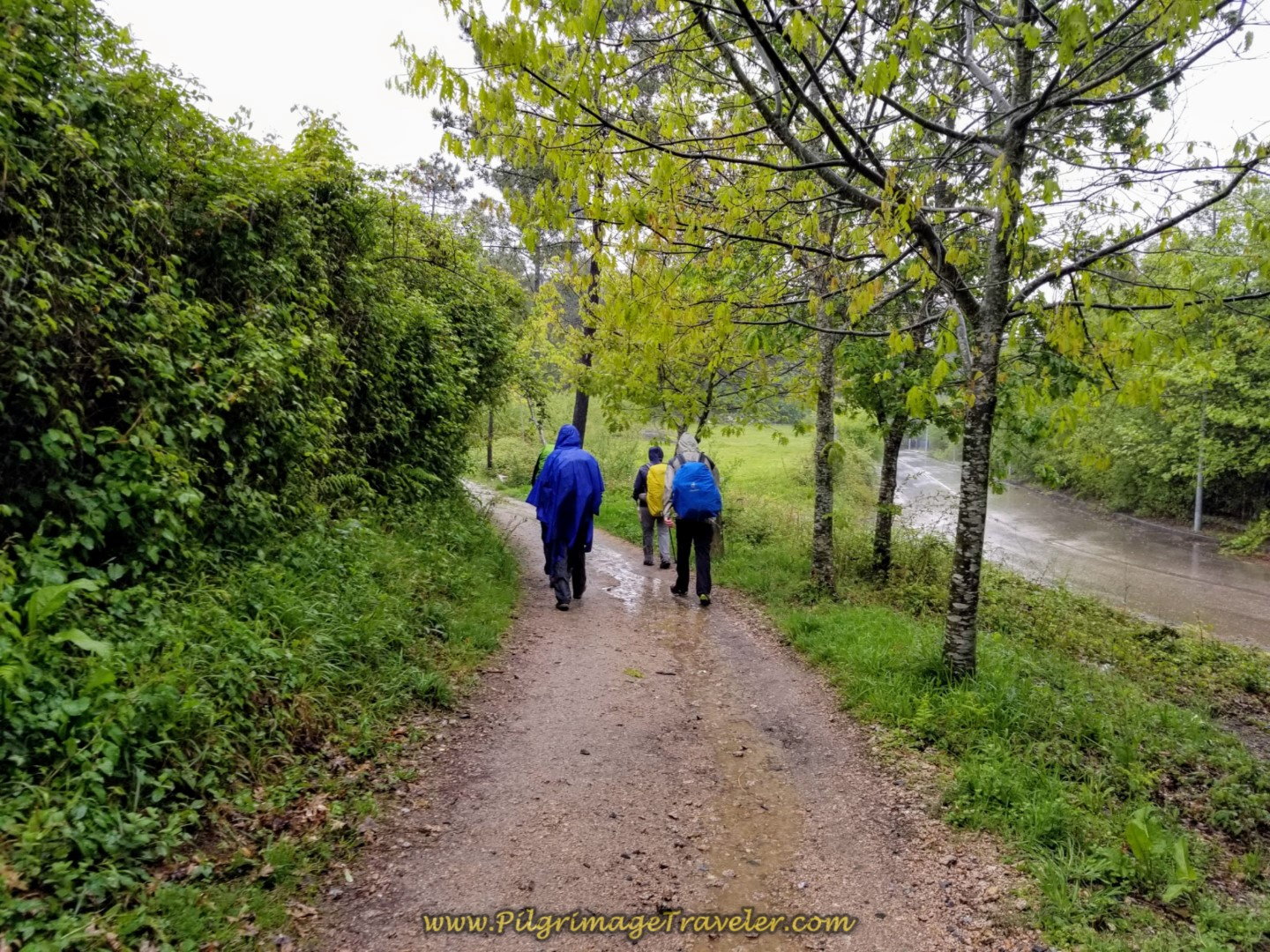 Second Brief Off-Pavement Section on day twenty-one of the central route of the Portuguese Camino