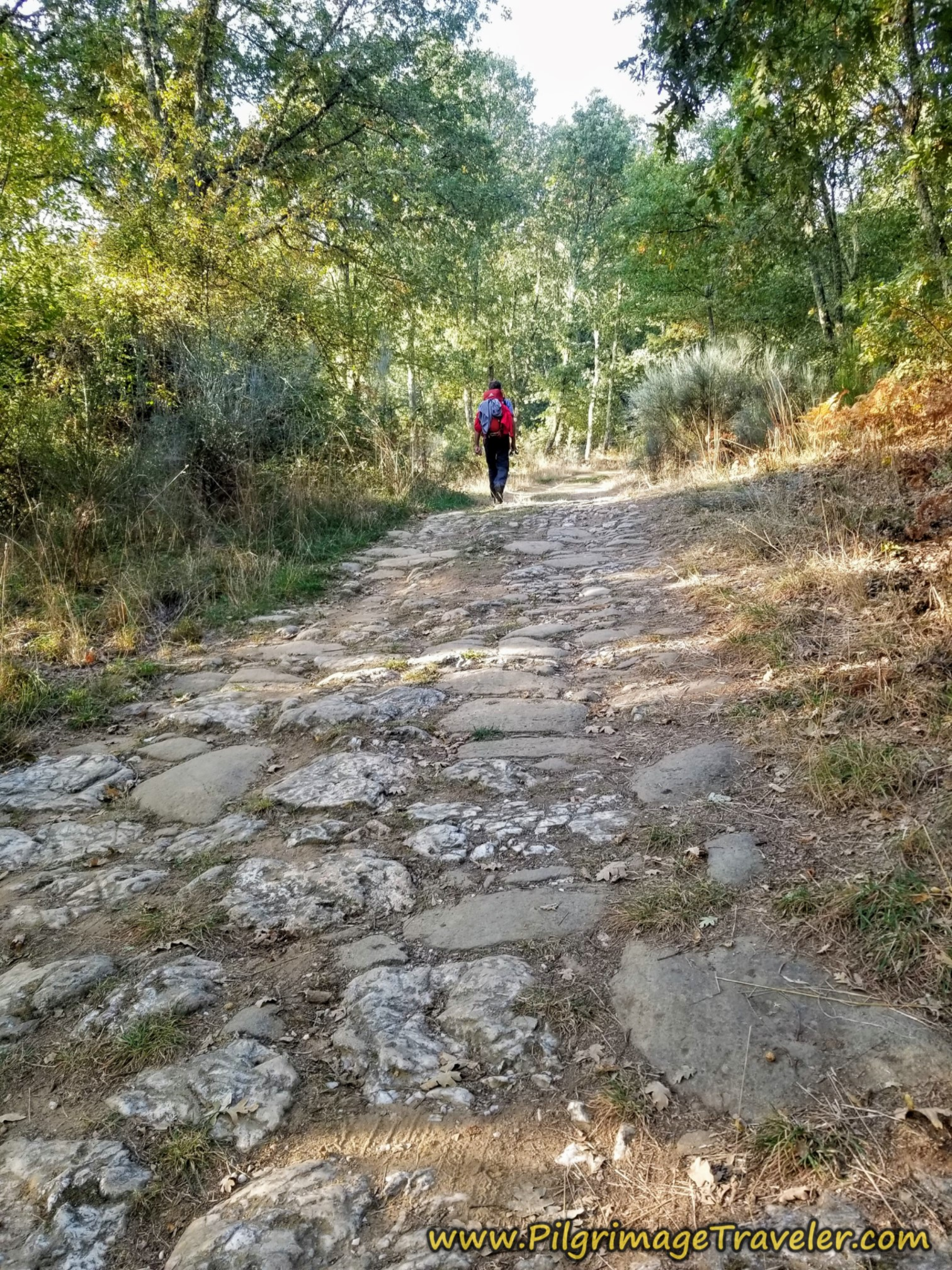 Join Roman Road on the Camino Sanabrés from Entrepeñas to Puebla de Sanabria