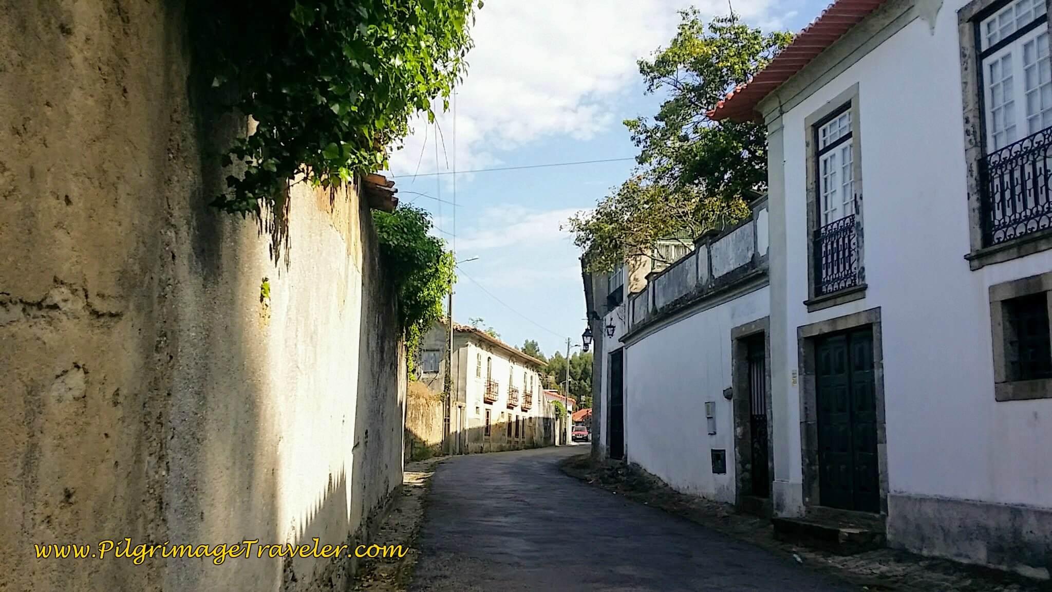 The Narrow Rua Dom Manuel on the Portuguese Way