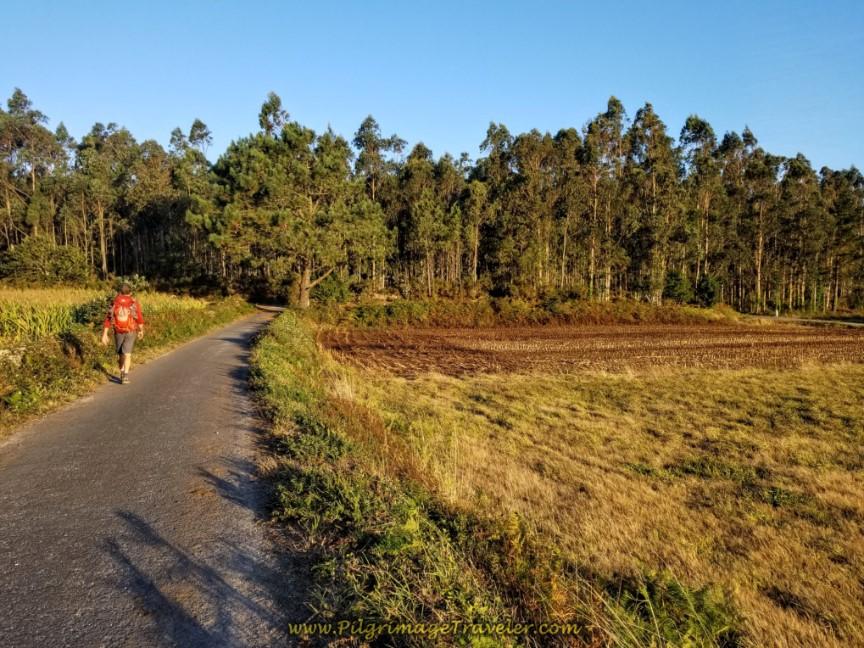 Quiet Country Road Through Fields Toward Senande