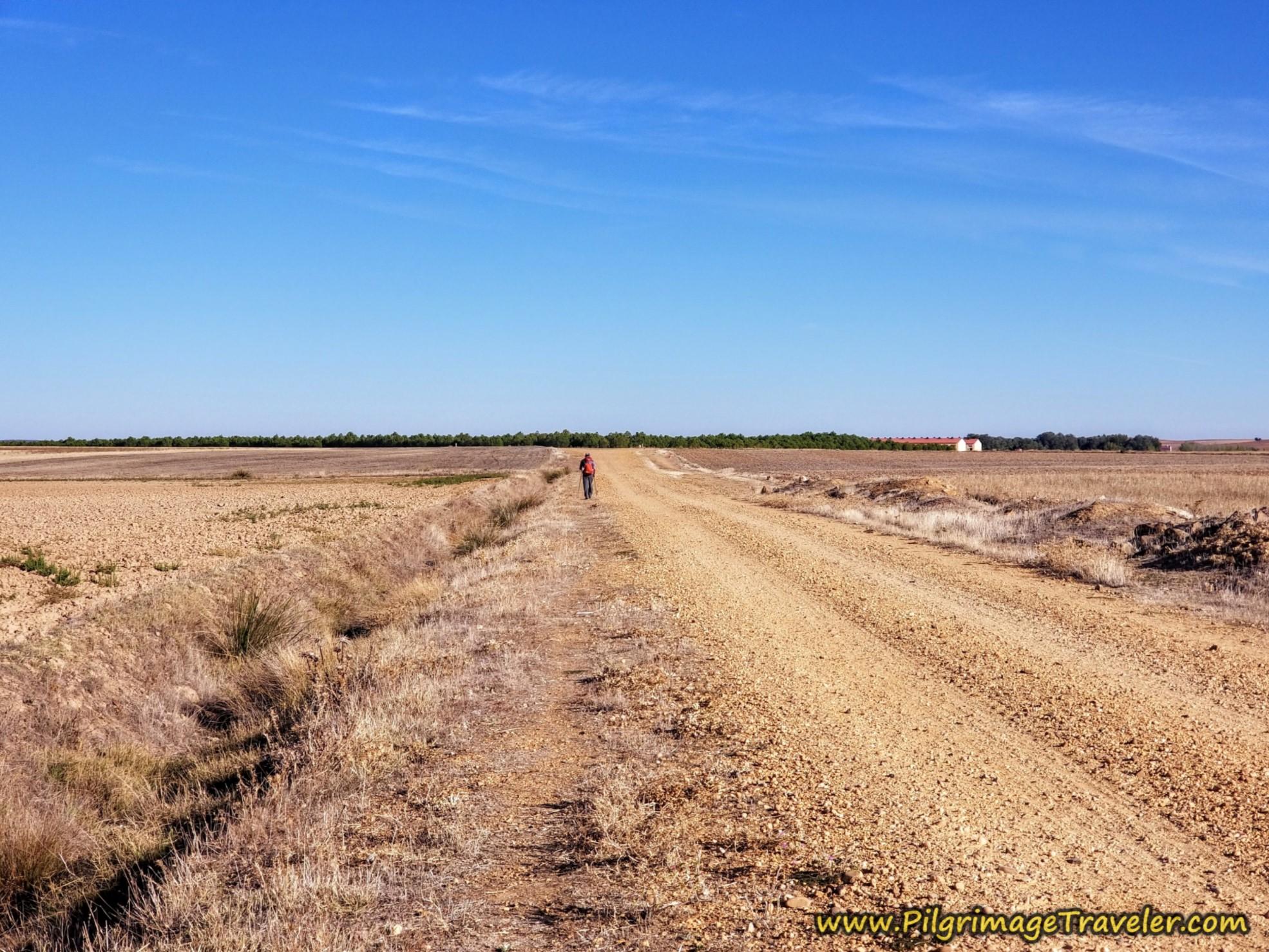 Road to Riego del Camino