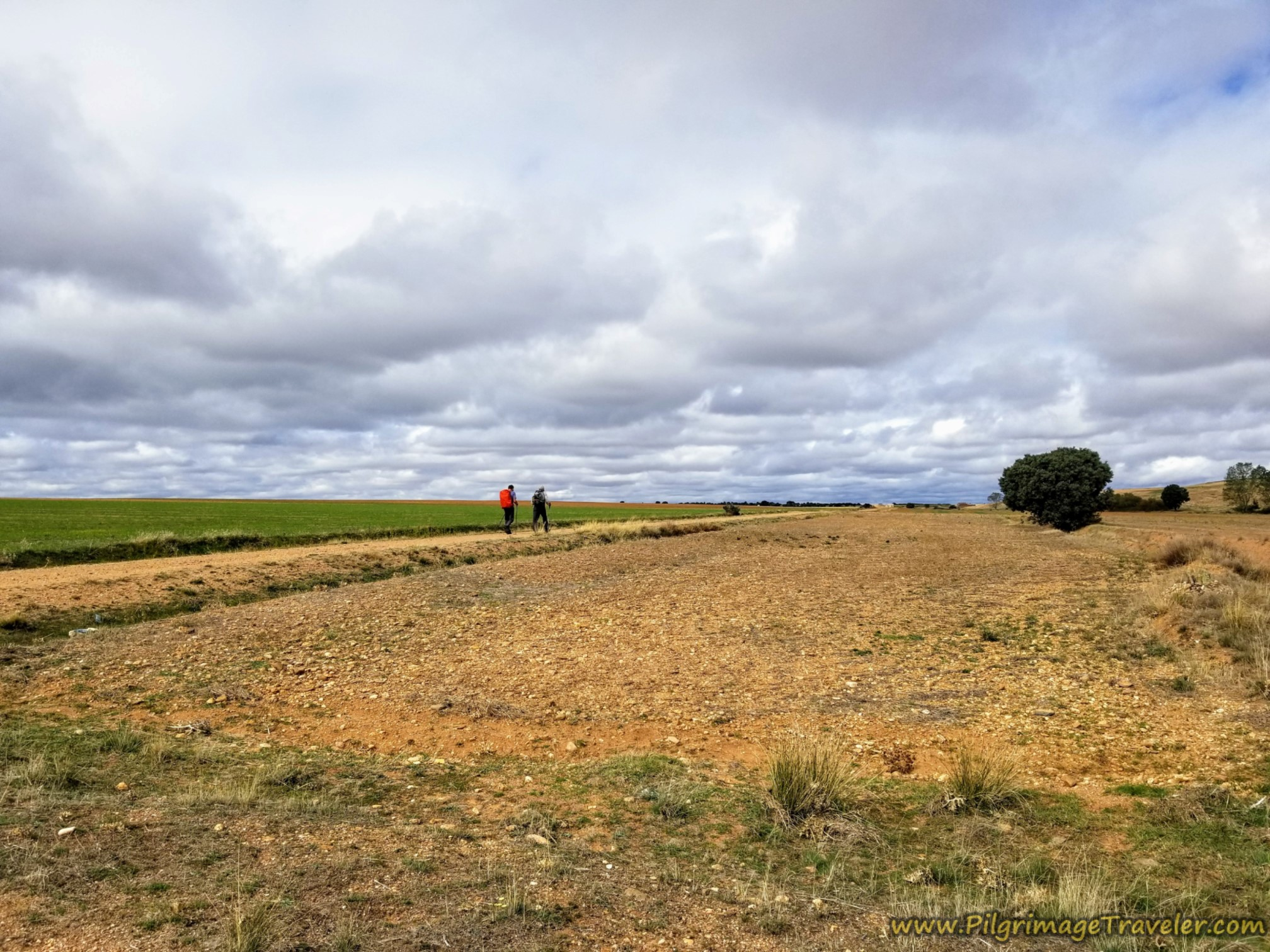 Walking Through Open Fields and Stormy Skies
