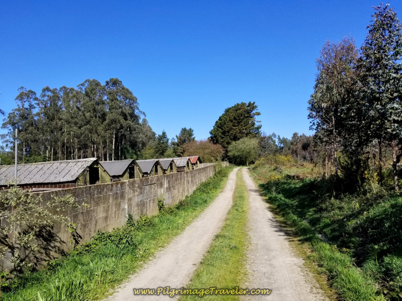 Pass By Old Chicken Houses on day six of the Camino Inglés
