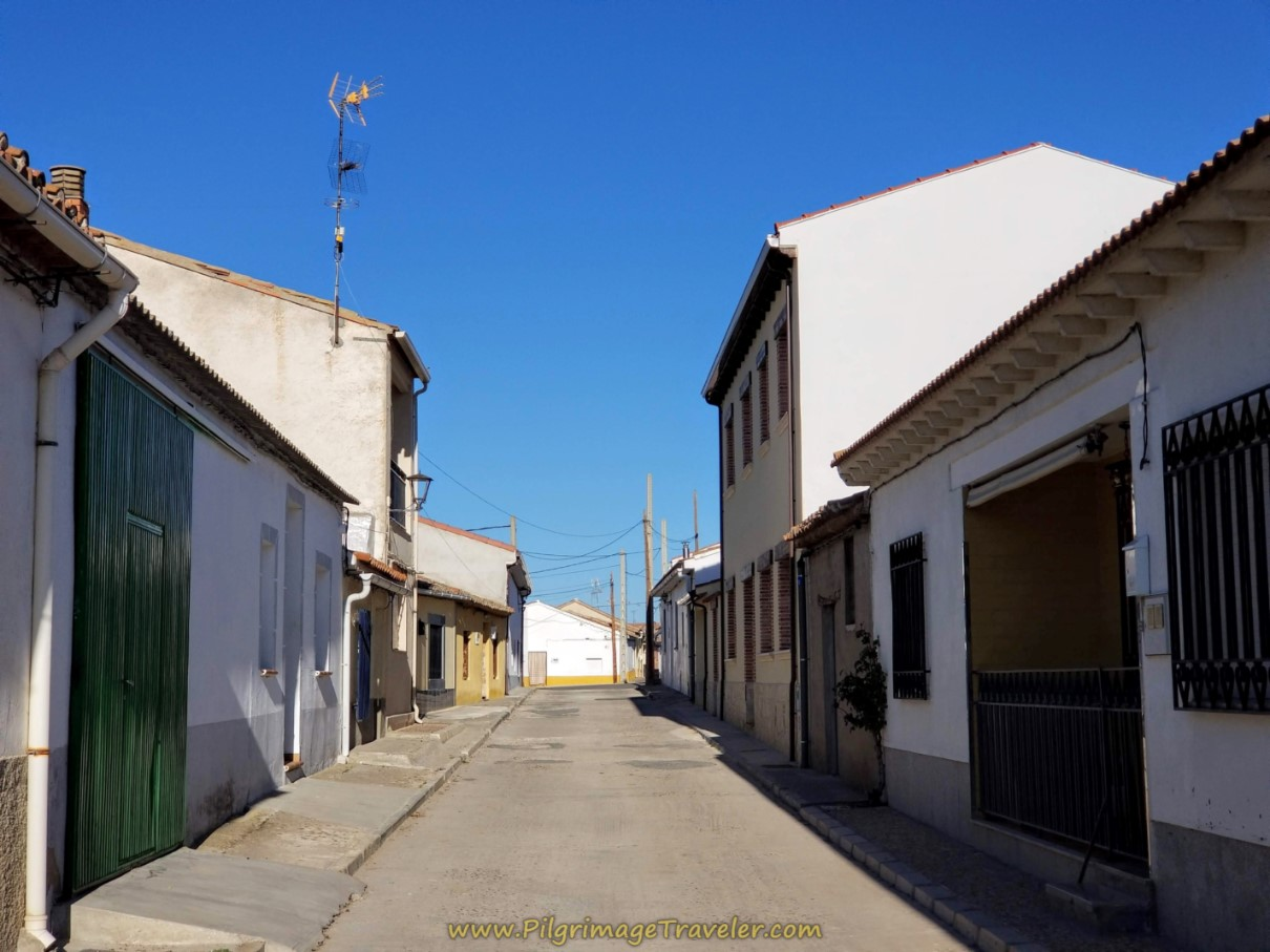 Walking Through Papatrigo