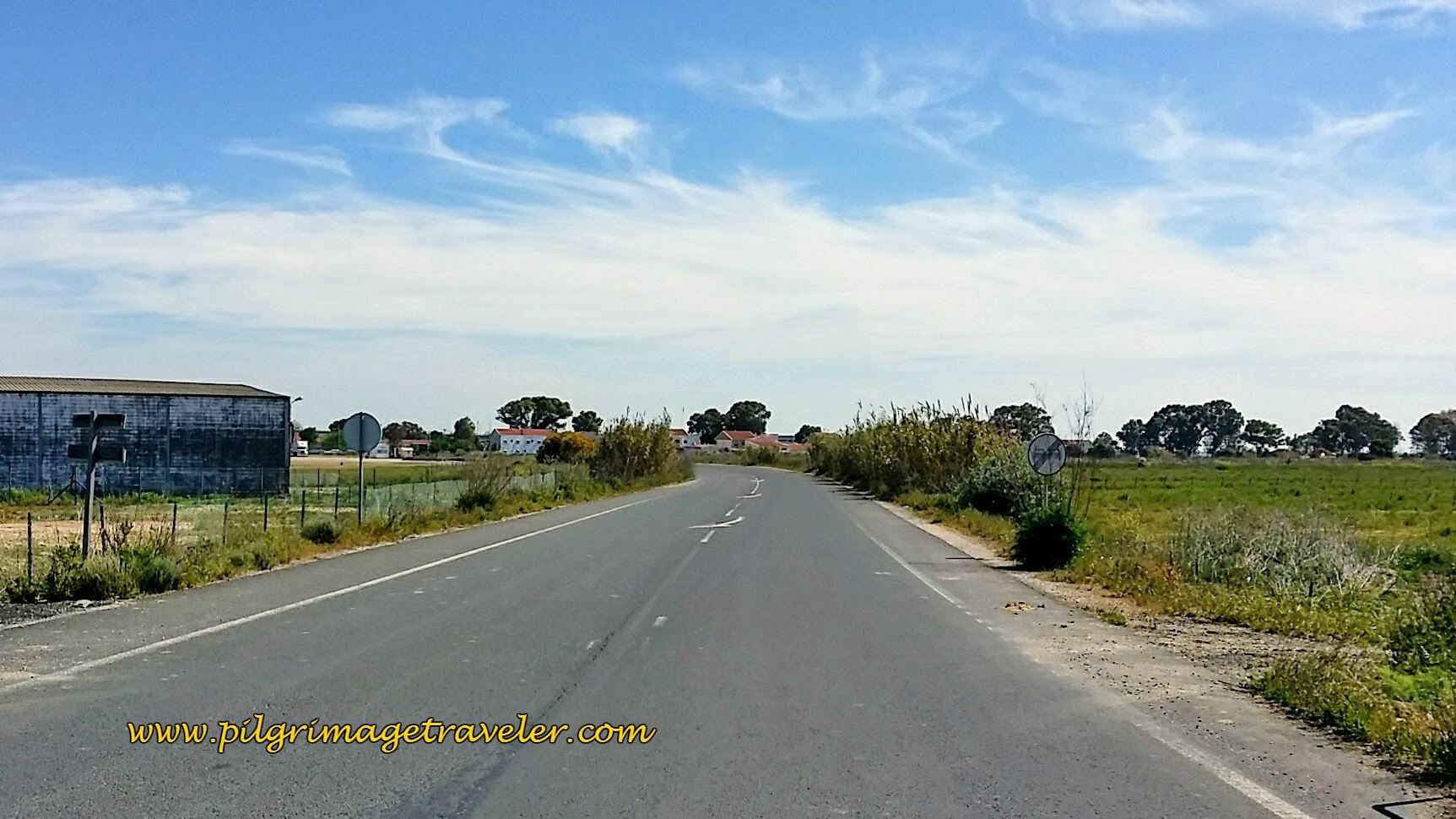Paved, Barren Road Toward Carregado