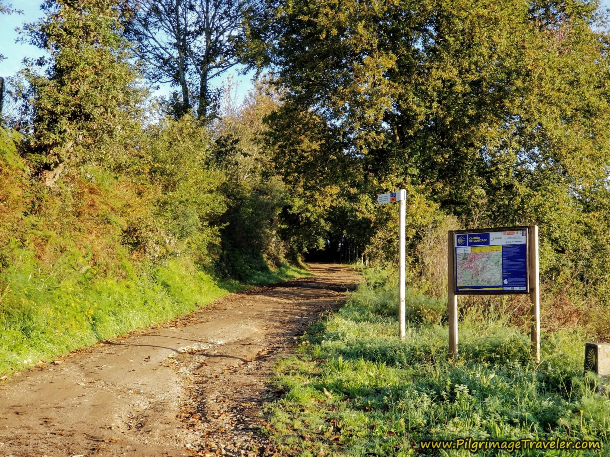 Enter Path System