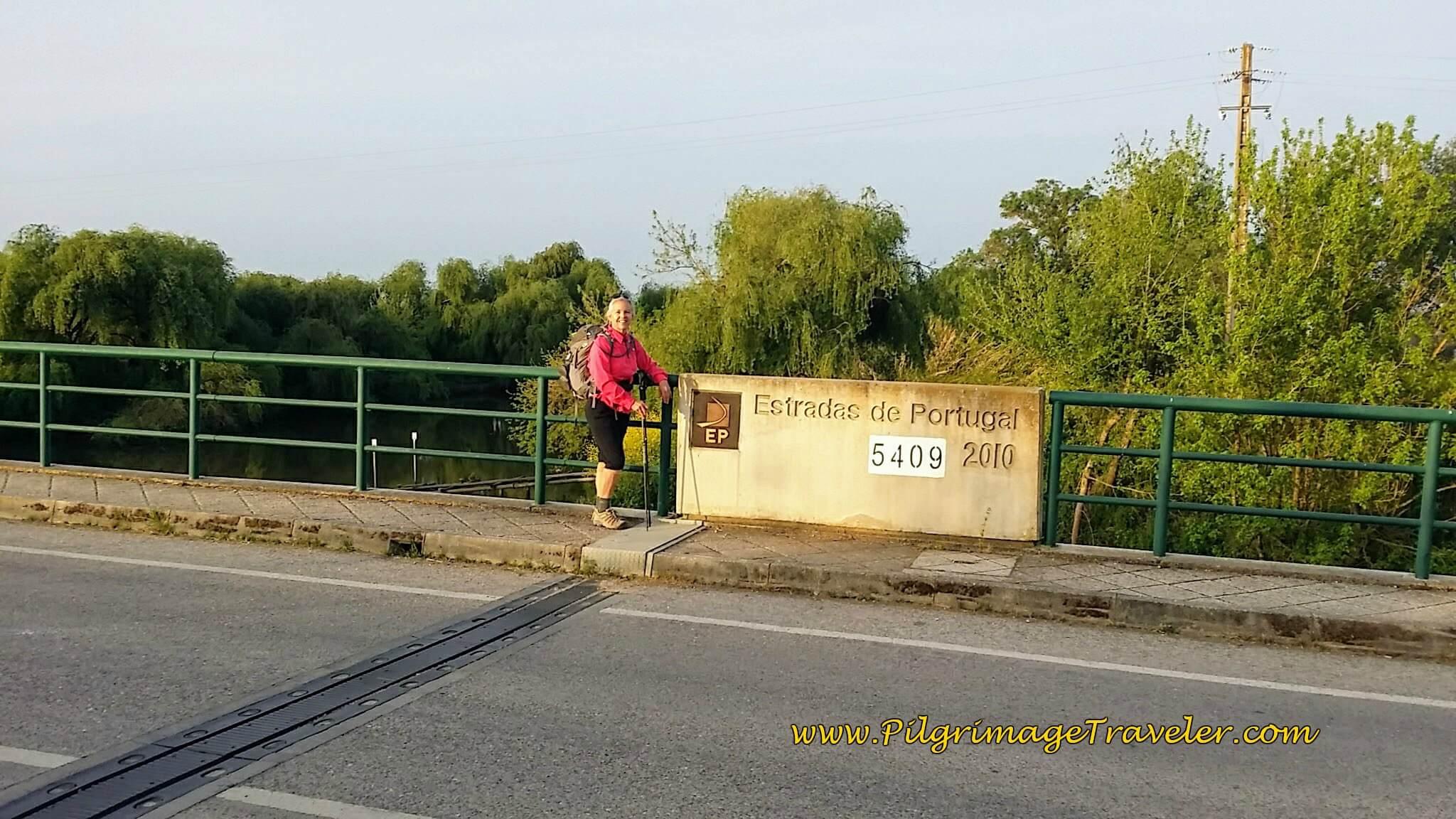 Elle on Estradas de Portugal Bridge, Azambuja
