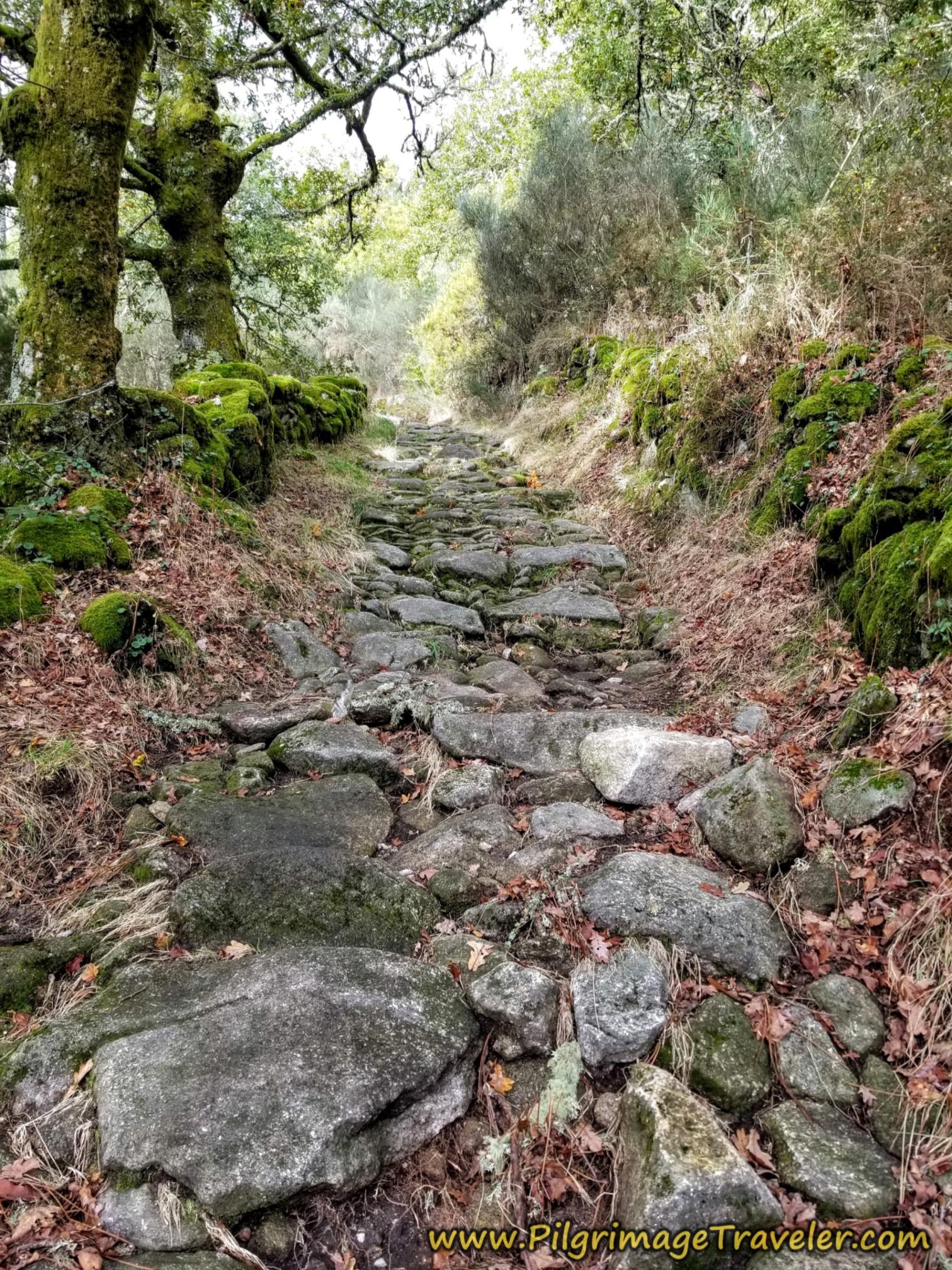 Roman Road in Galicia