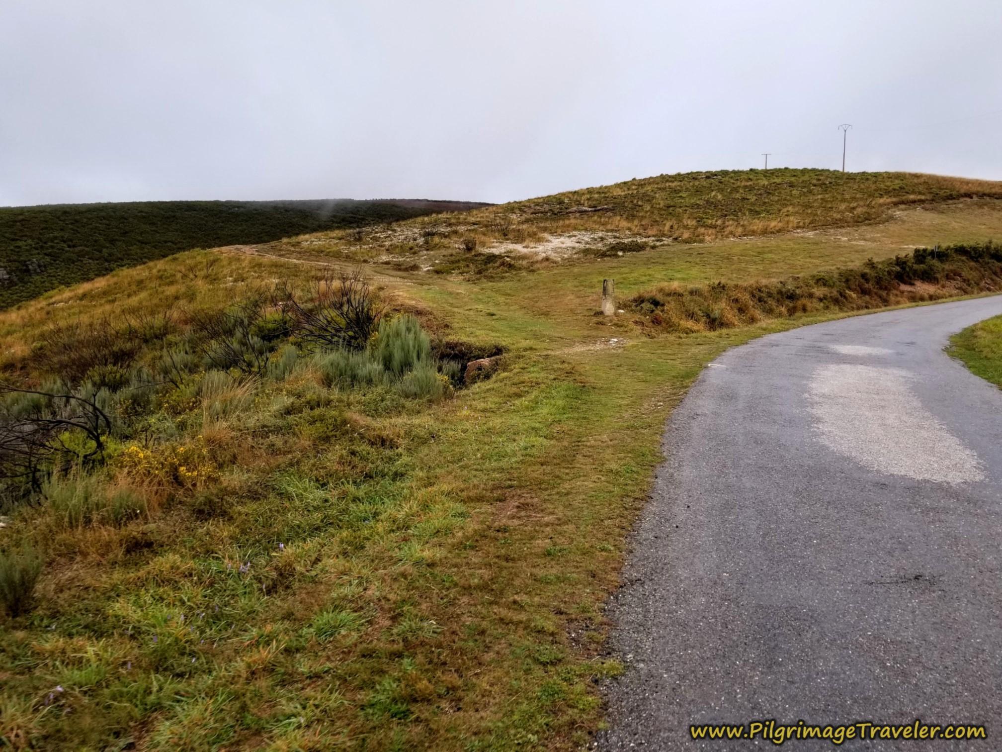 Turn Left Onto Lane