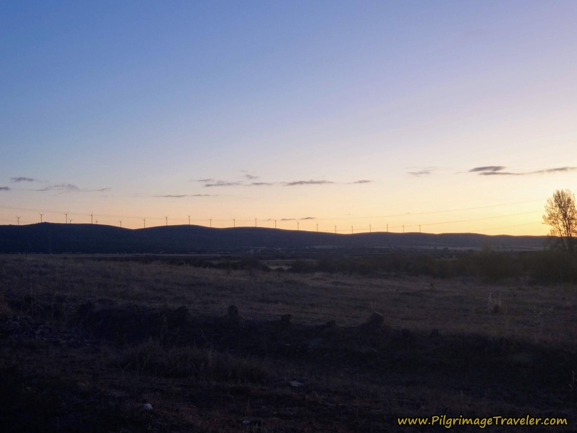 Windmills in Silhouette on the Ridge