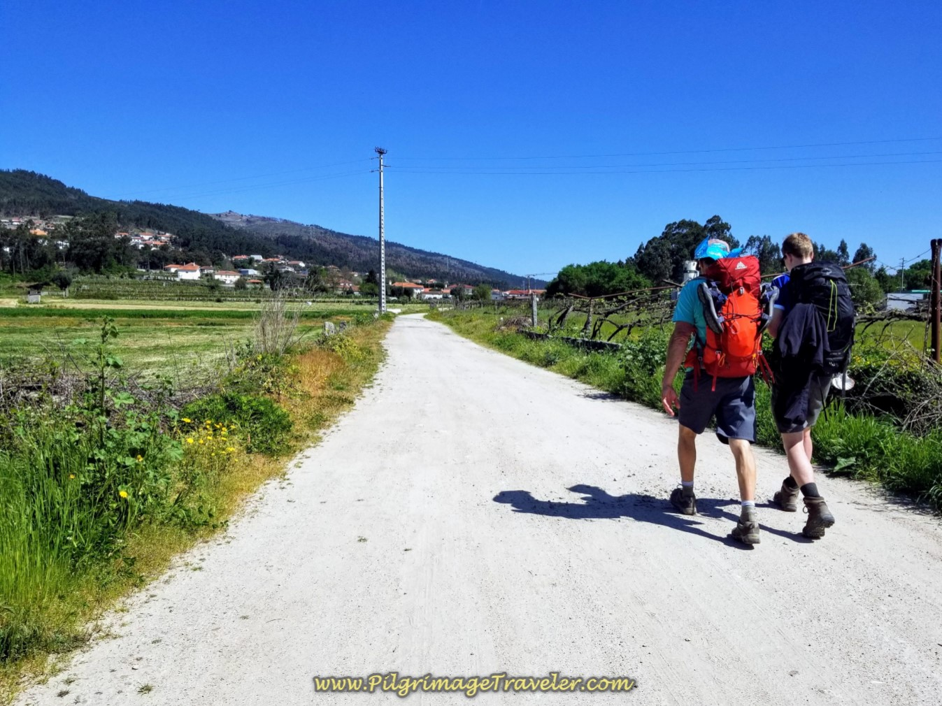 Walking Toward Balugães on day seventeen on the Central Route of the Portuguese Camino