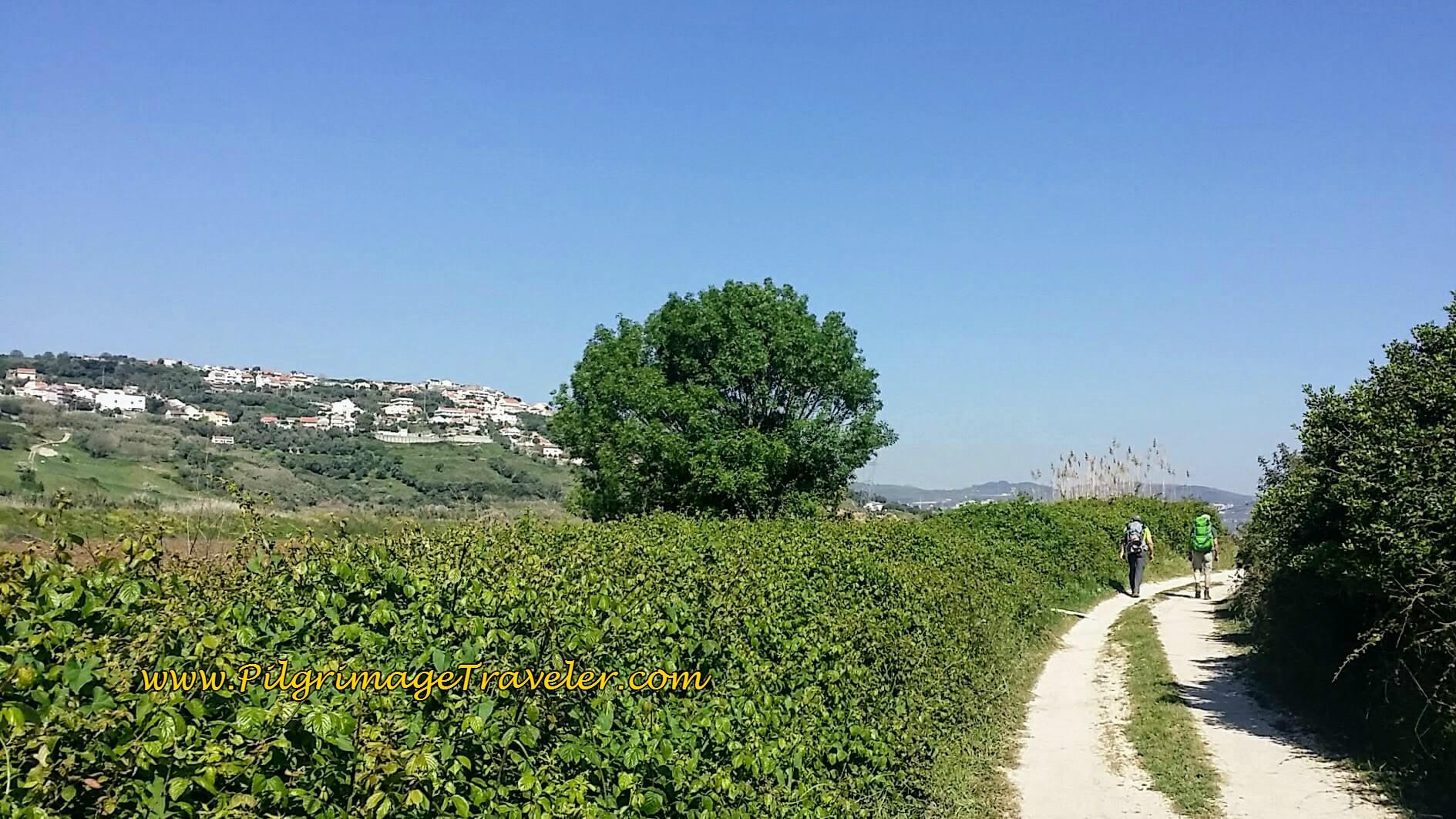 Walking on Track Towards Alpriate
