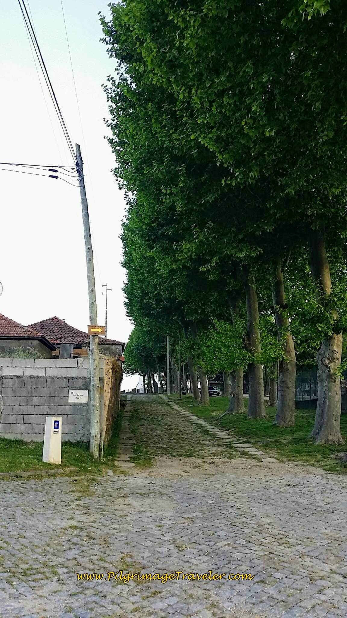The Roman Road in Airas on day fourteen of the Portuguese Way