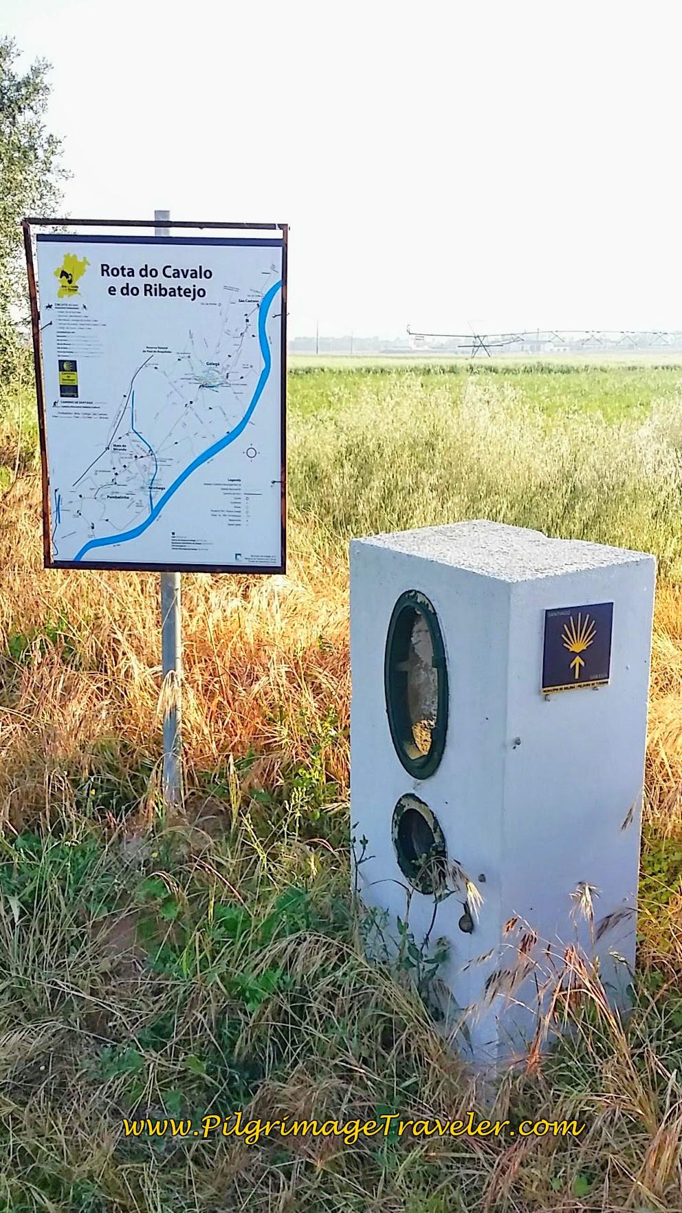 Final Golegã Municipality Map and Waymark