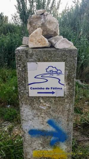 Shared Camino Routes, Santiago and Fátima Waymark