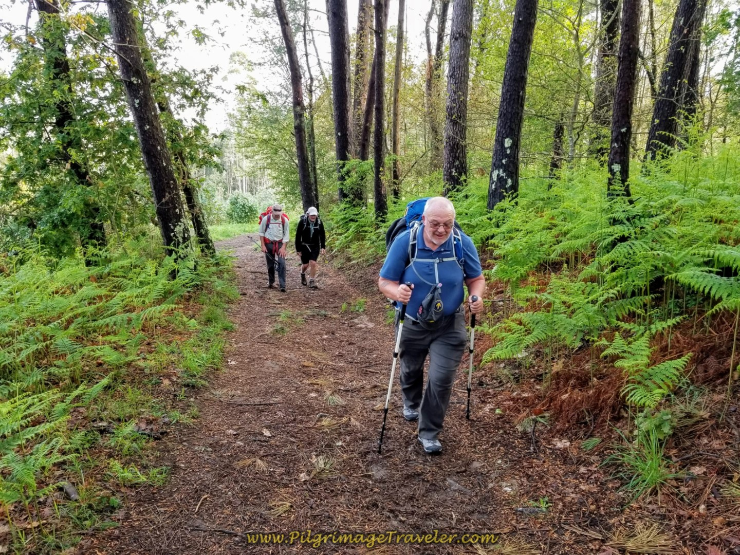 Steve Pushes On Toward the Top on day two of the Camino Inglés
