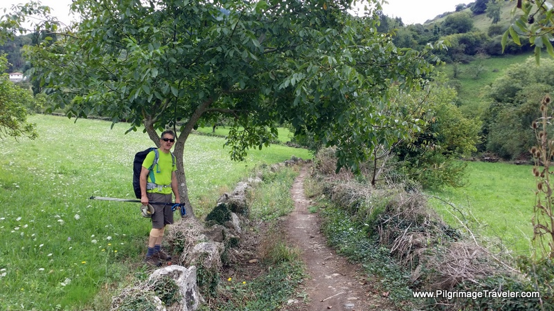 Rich on the path to Doriga, Camino Primitivo