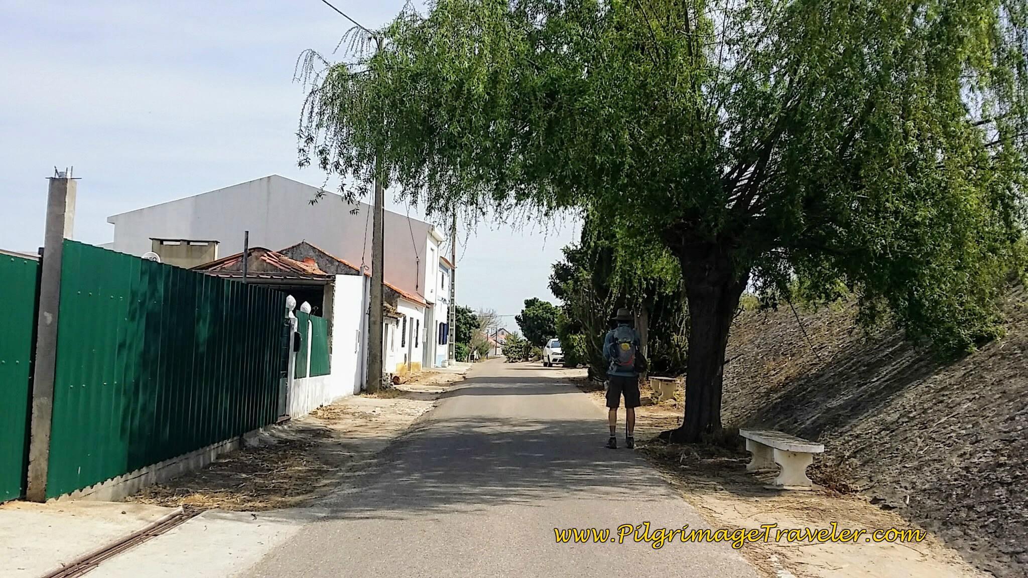 Rua do Morgado Towards Porto Muge