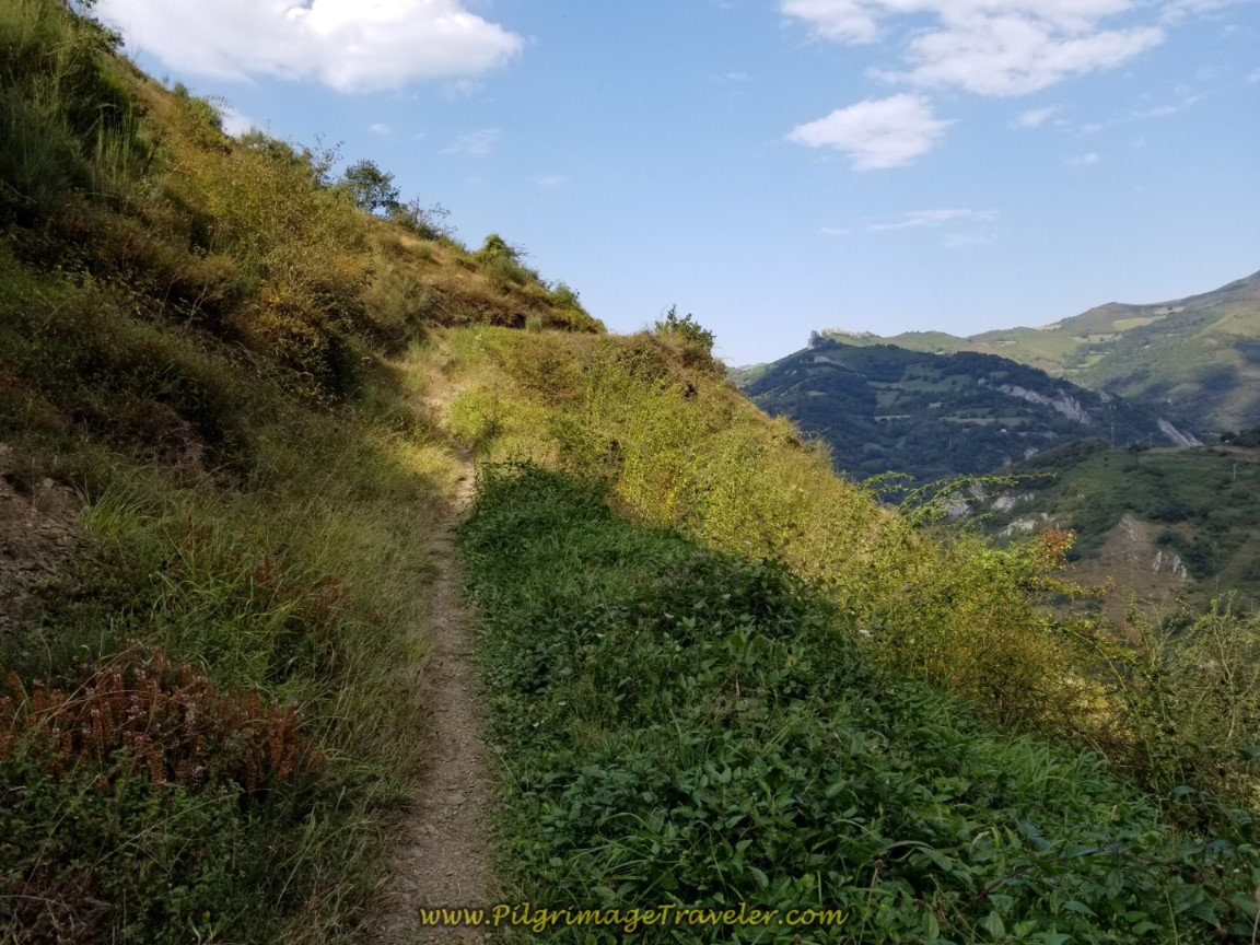 Views Open Again on this path on day four of the Camino del Salvador
