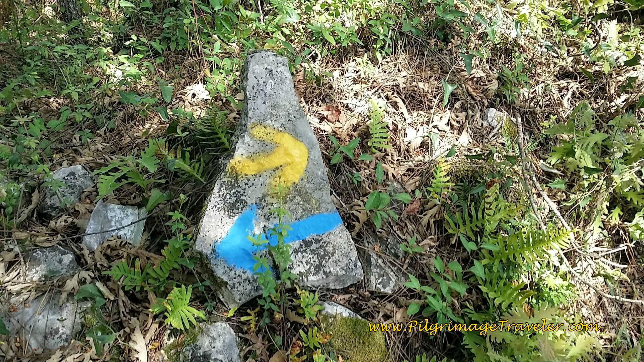 Yellow Arrow Towards Santiago, Blue to Fátima