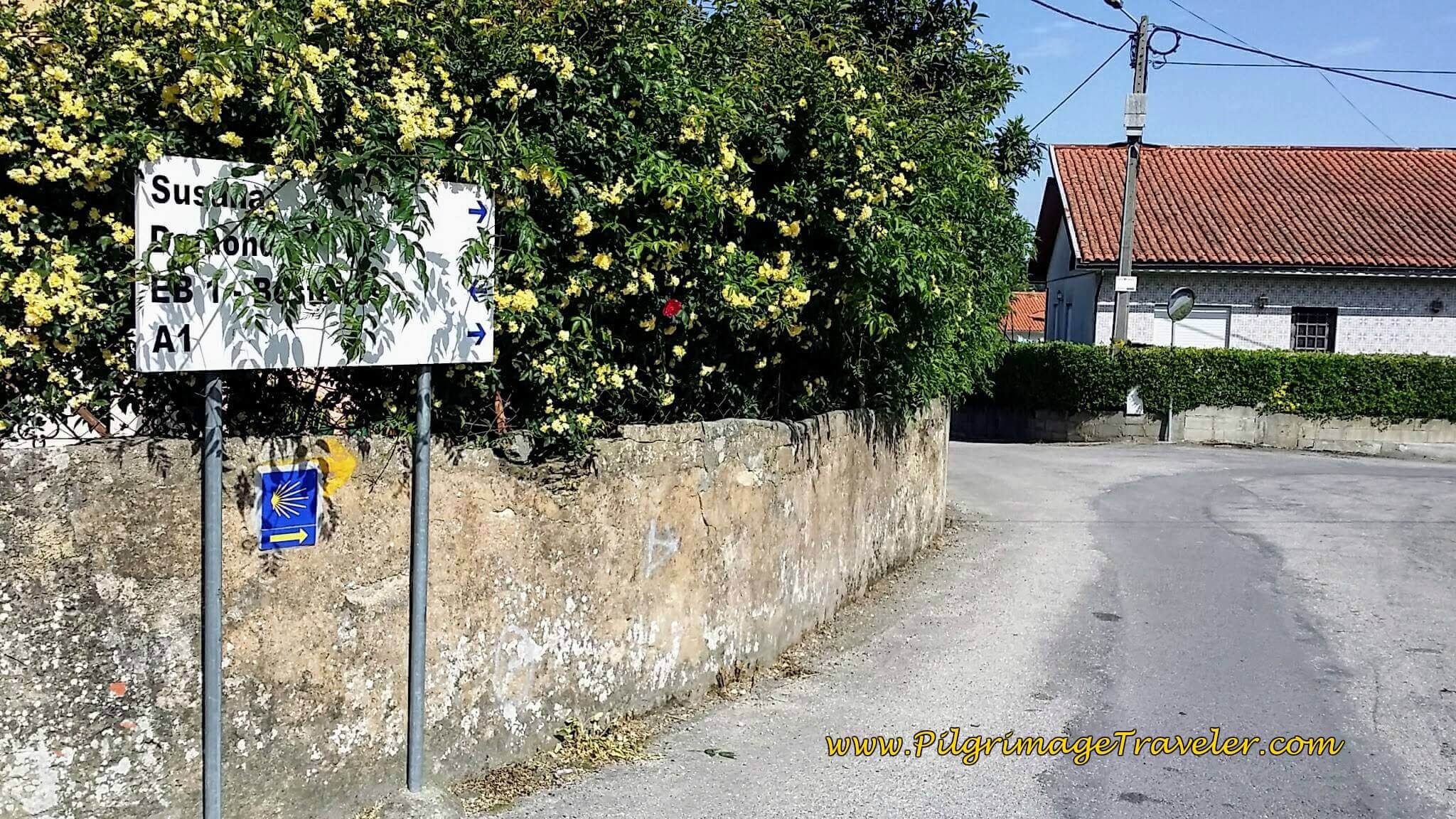 A Right Turn Here off the Rua de Besteiros To Rua de Estrada Real on day thirteen of the Camino Portugués