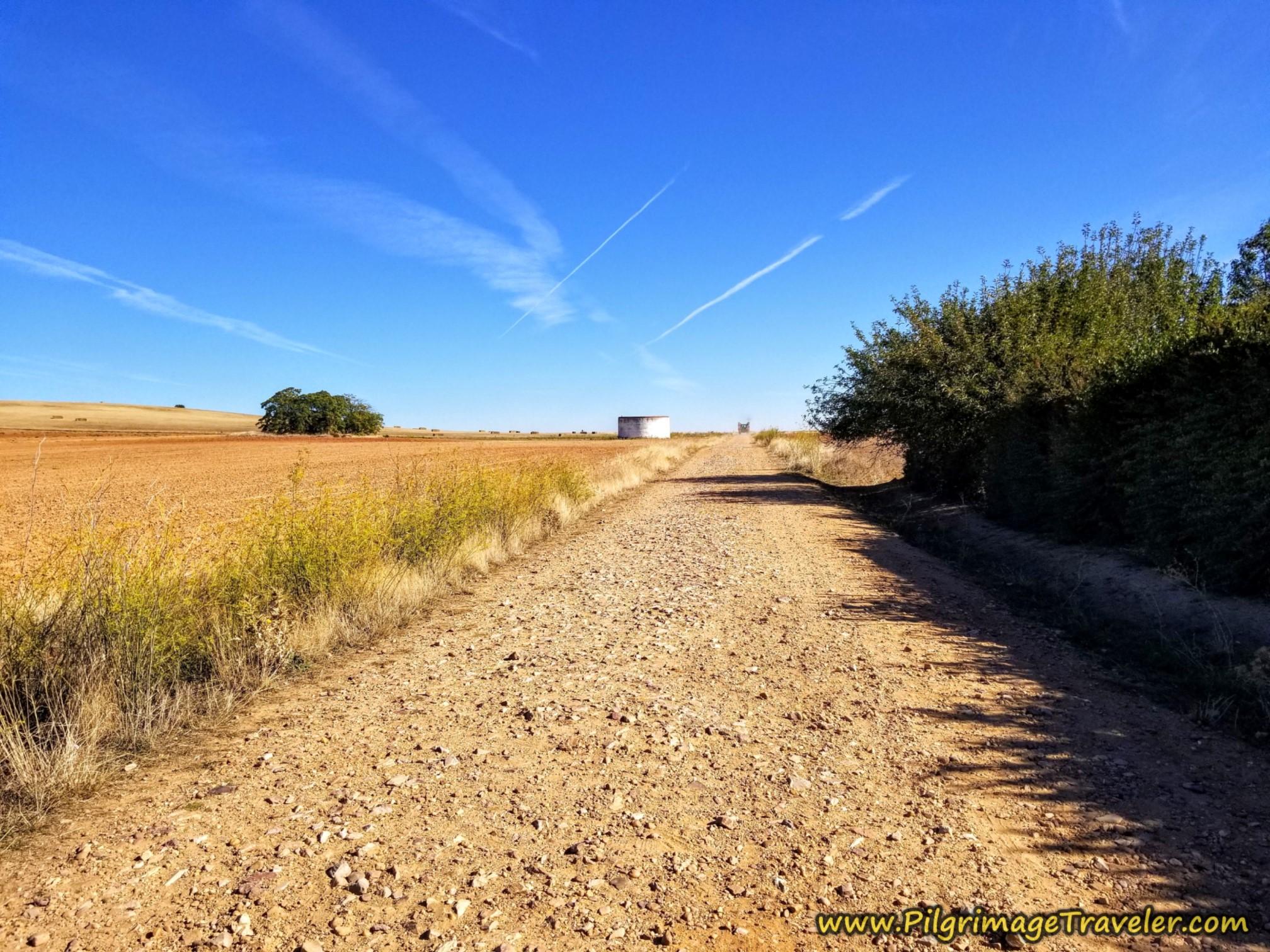 Back on Open Road on the Vía de la Plata from Montamarta to Granja de Moreruela