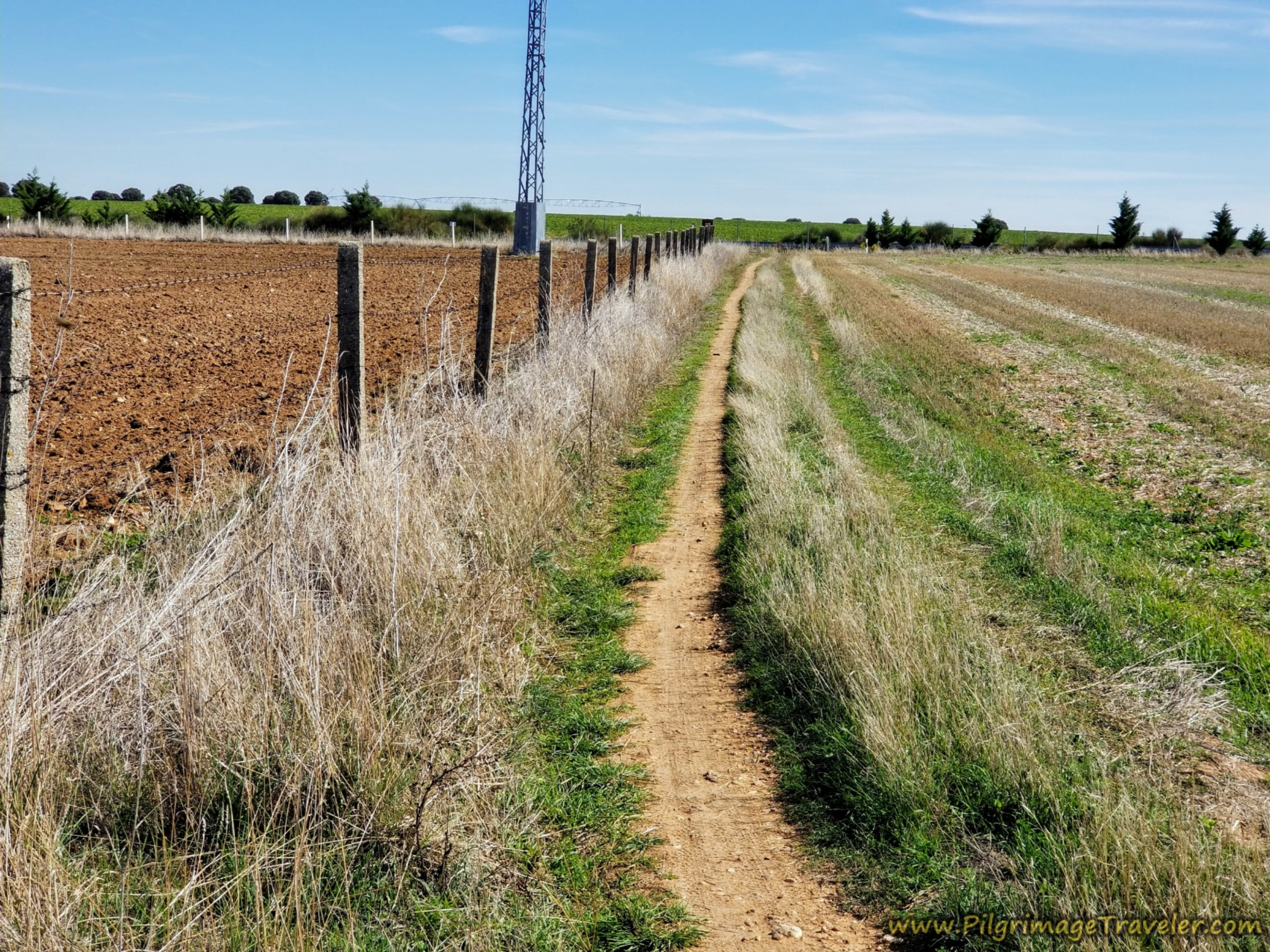 The Path Ahead at the Fenceline