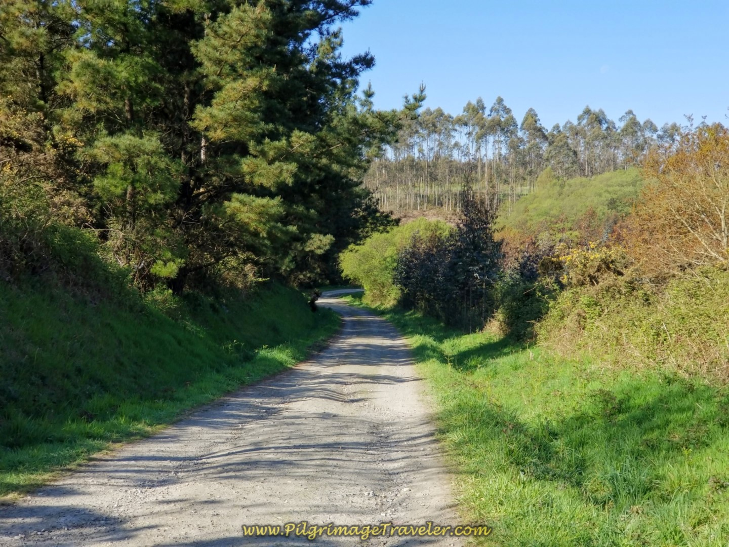 Short Downhill Reprieve on day six of the Camino Inglés