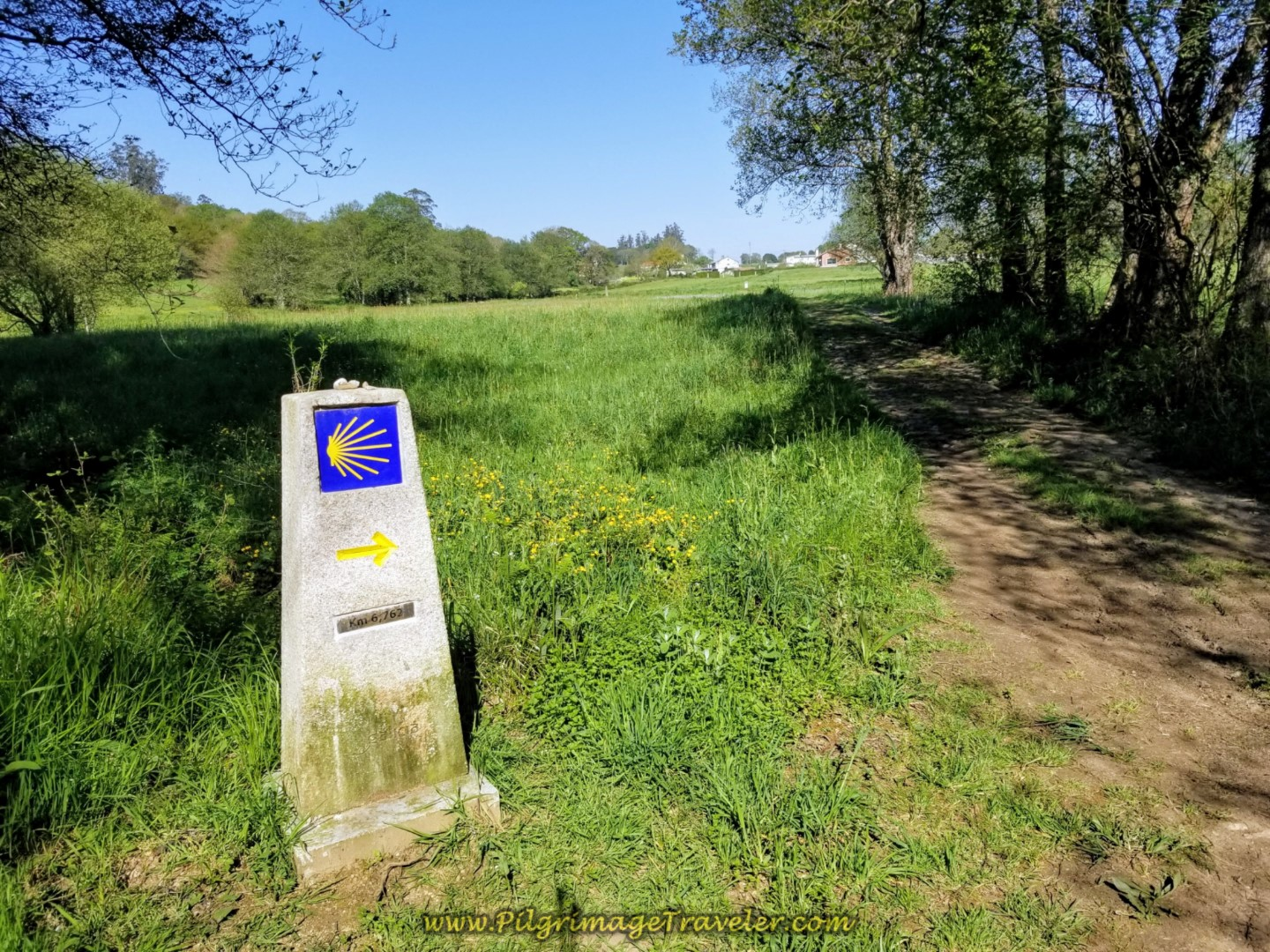 Forest Opens to Fields at 6.76 Kilometer Marker on day eight of the Camino Inglés