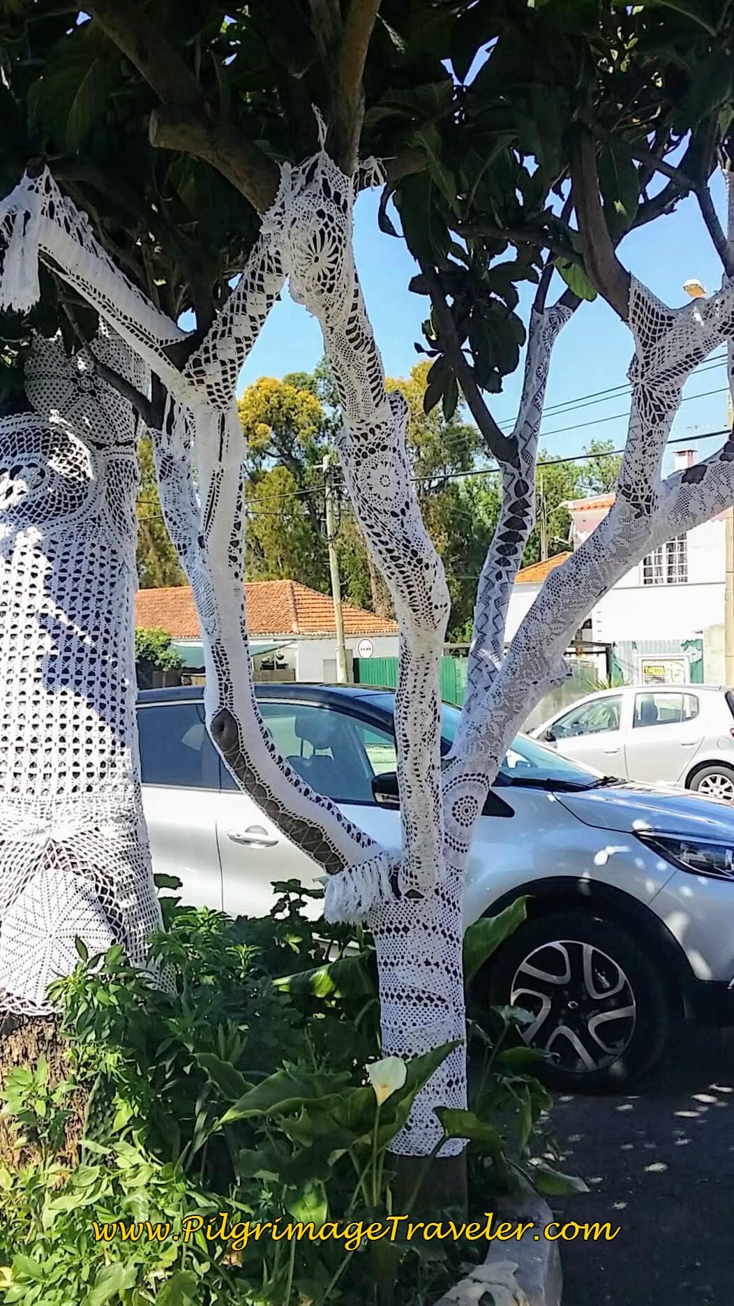 Crocheted Tree Adornment, Alpriate, Portugal