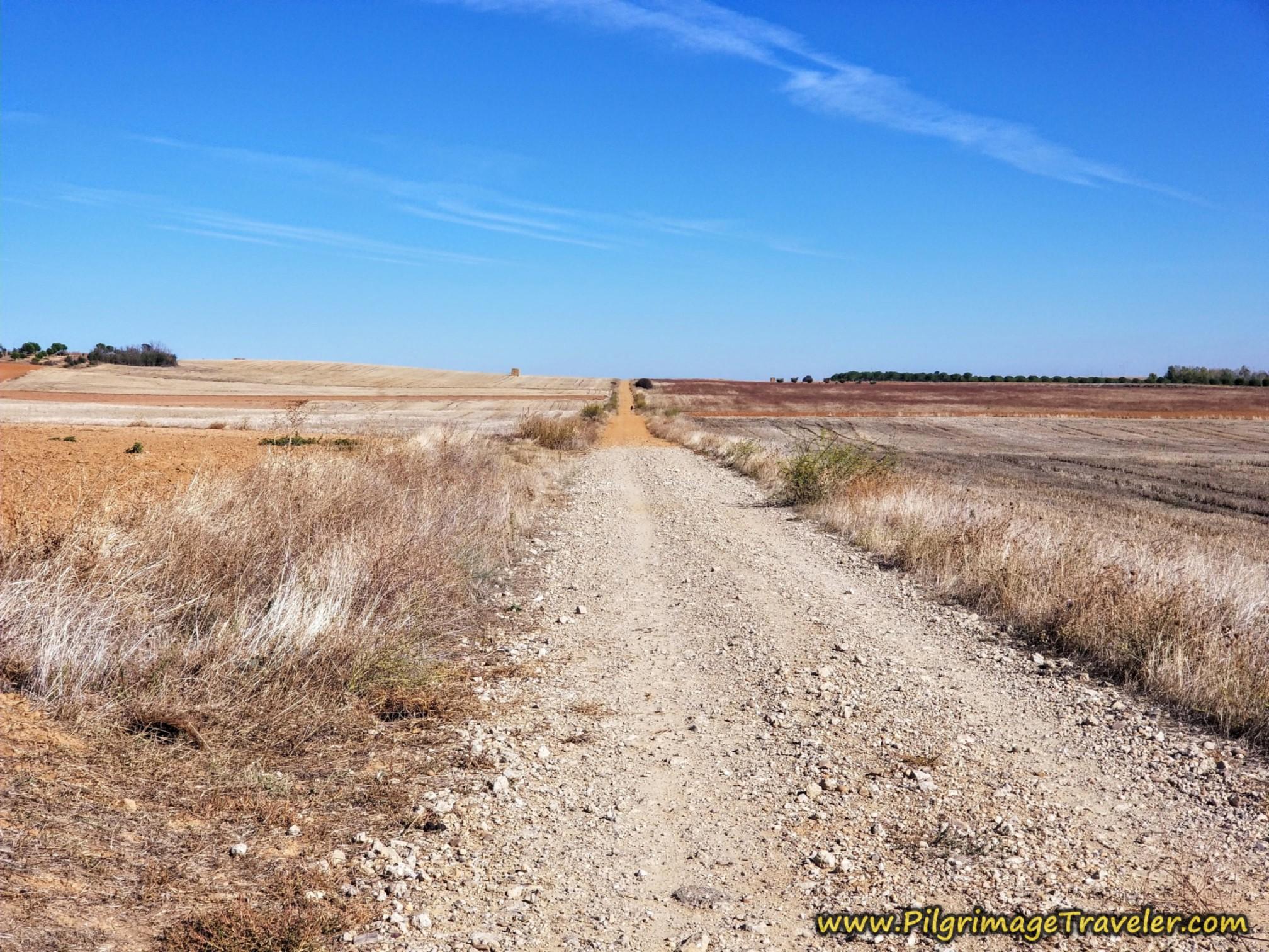 Long Hot Road Ahead on the Vía de la Plata from Montamarta to Granja de Moreruela