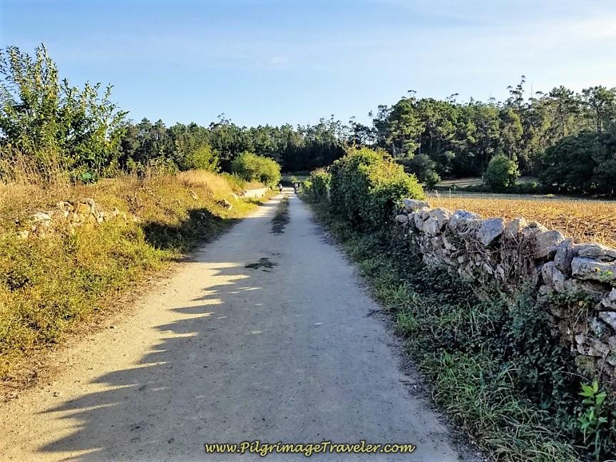 Gravel Lane toward Quintáns