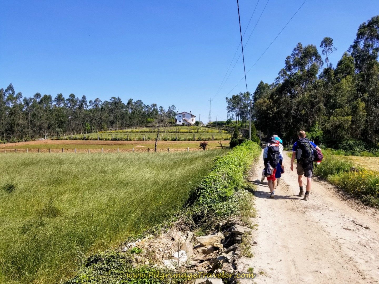 Onward on the Rua Caminho de Santiago on day sixteen on the Central Route of the Portuguese Way